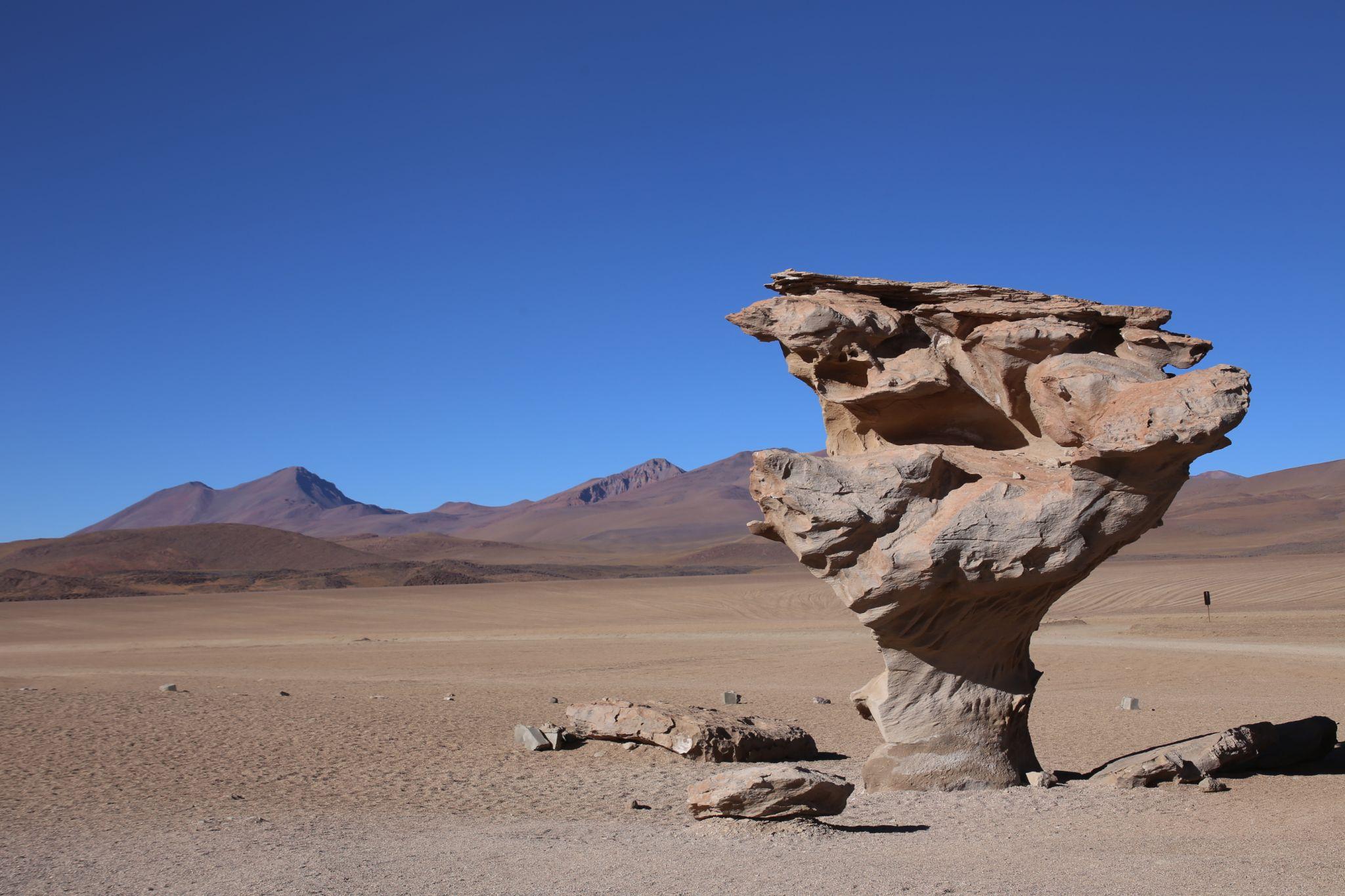 Arbol de Pietra (Stone Tree), Bolivia