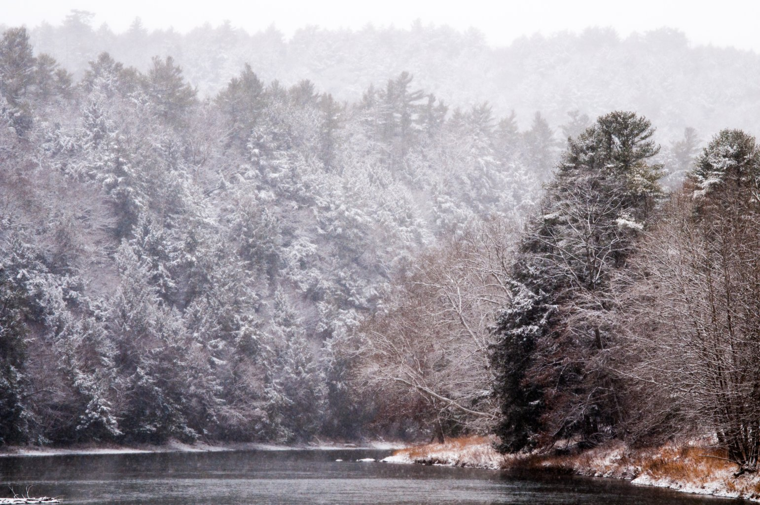 Clarion River in Cook Forest, USA