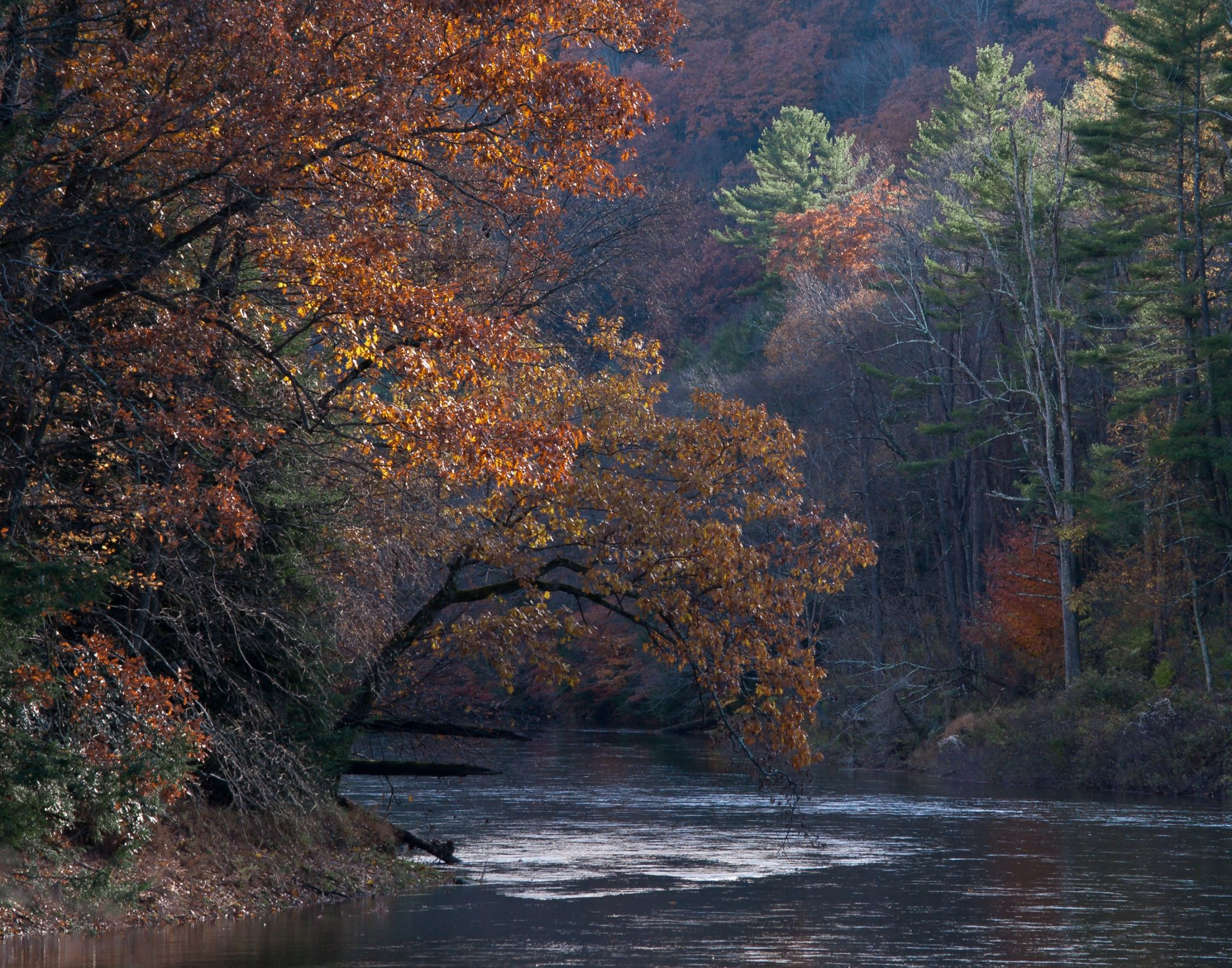Clarion River near Clear Creek, USA