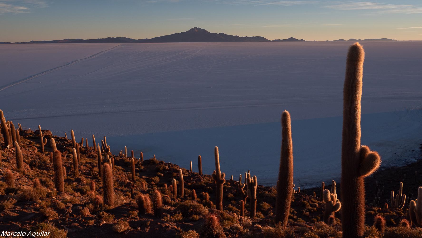 Incahuasi sunrise, Bolivia