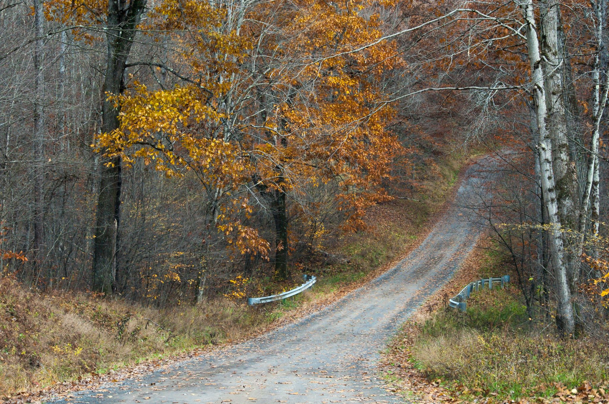 Millstone Road, USA