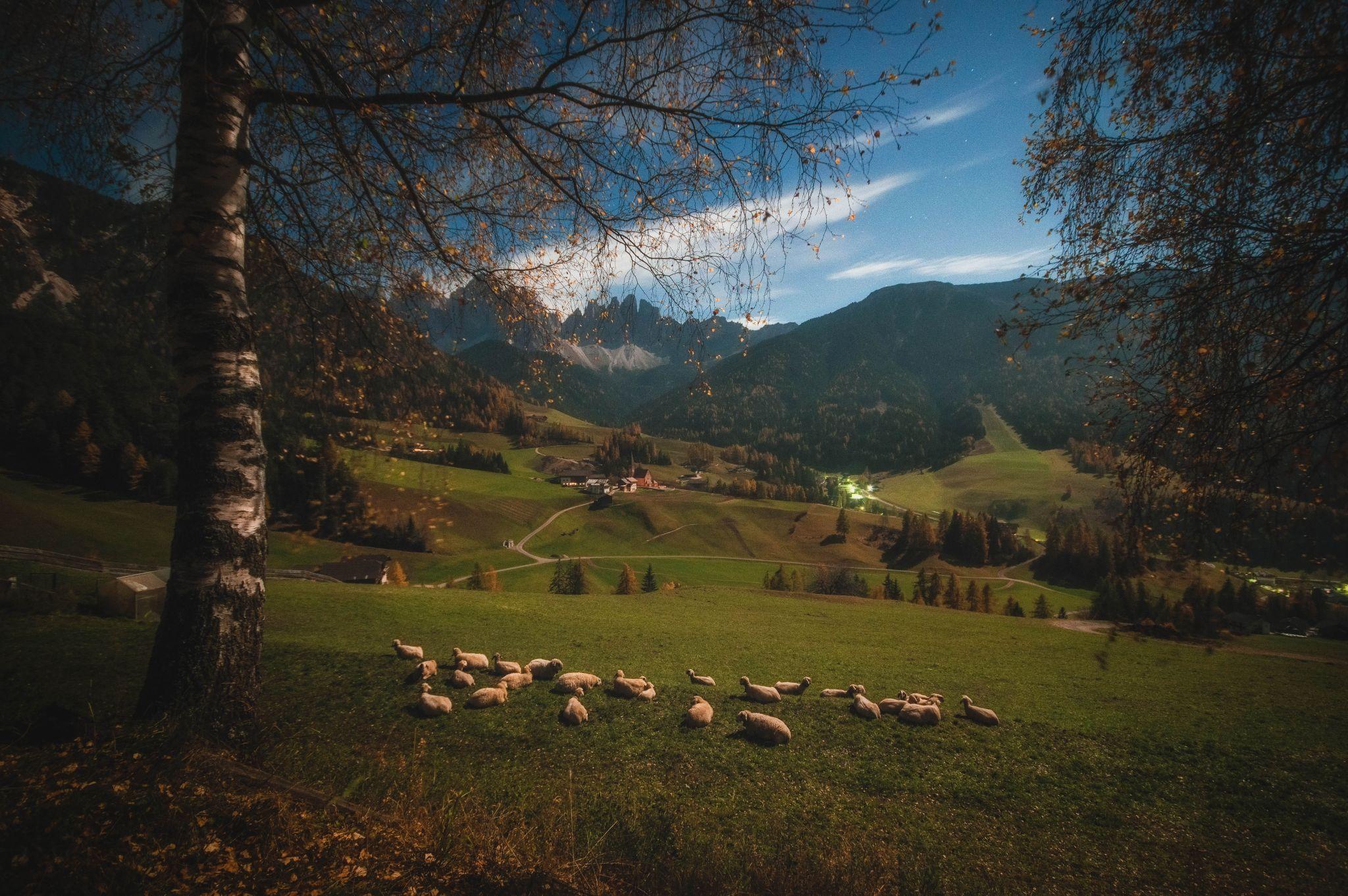 Santa Maddalena - Funes - South Tyrol - Italy, Italy