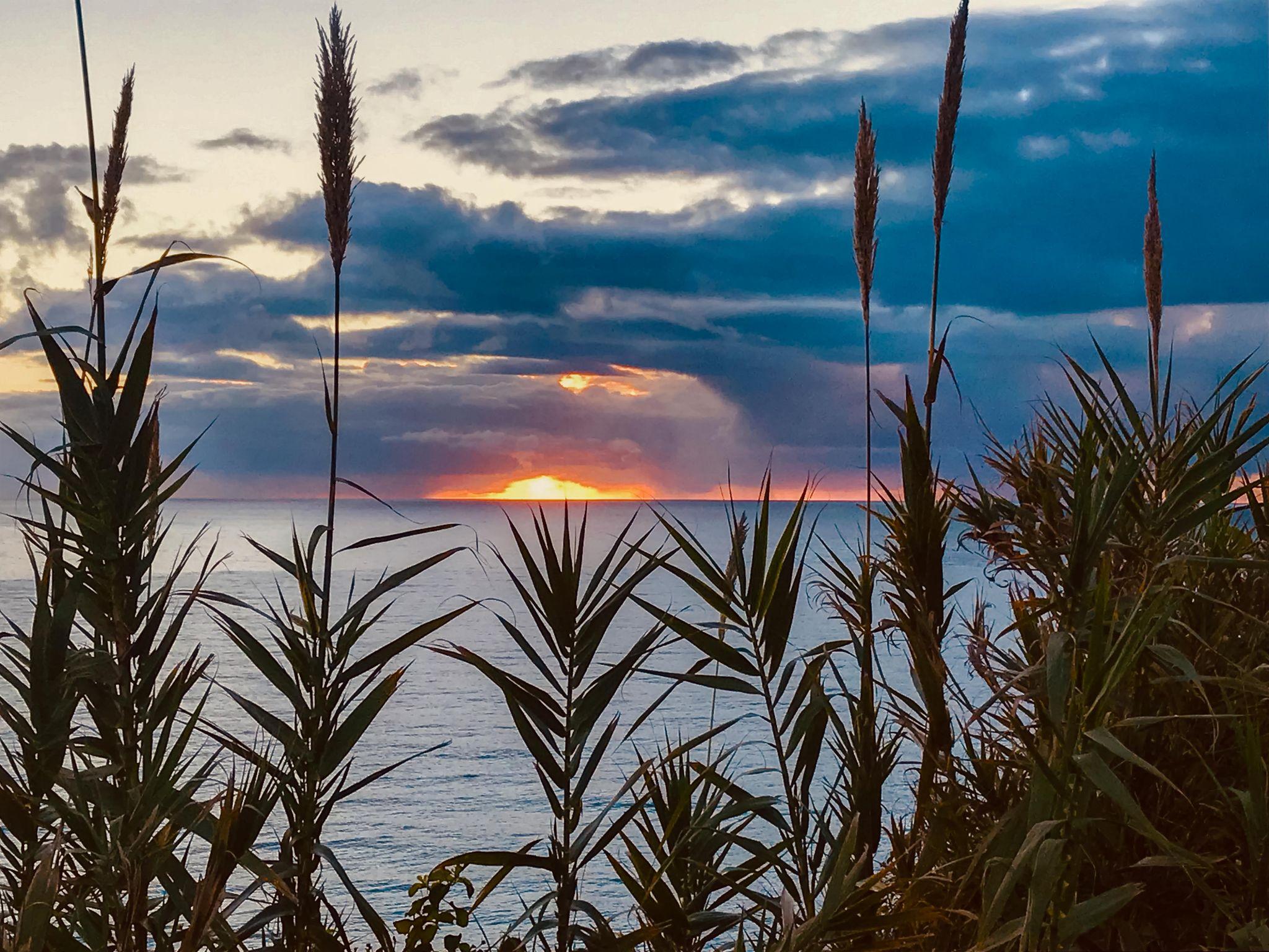 Sunrise Bungan Beach Sydney, Australia