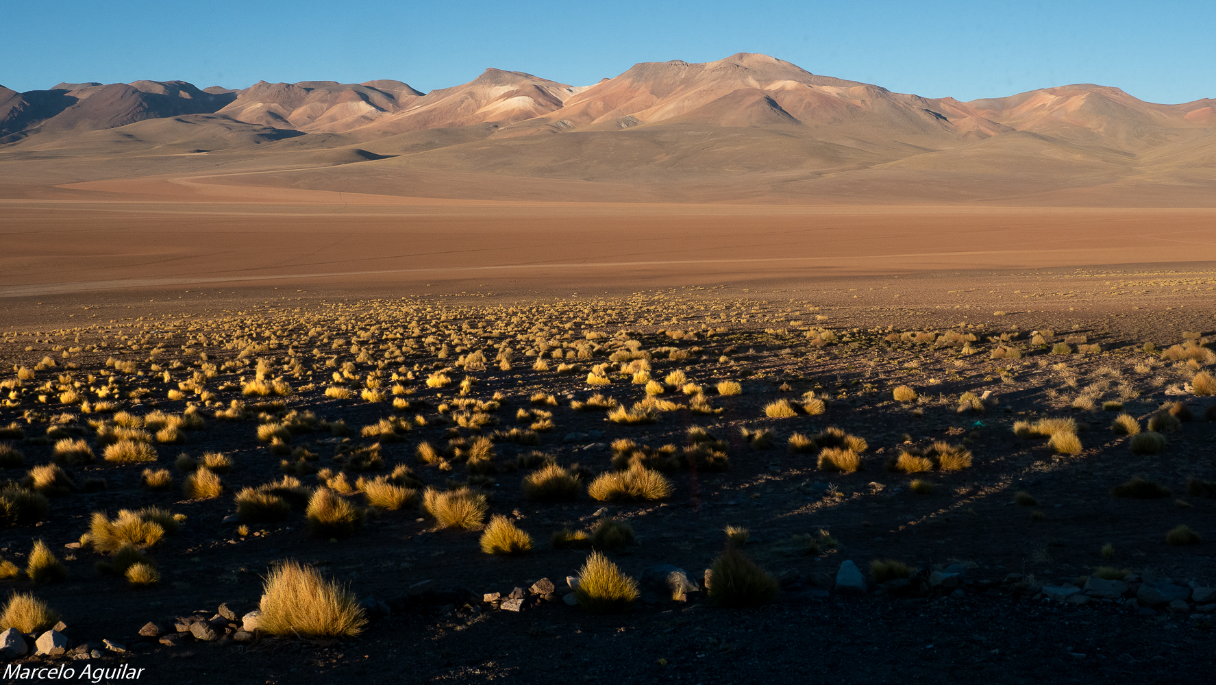 Tayka del Desierto, Bolivia