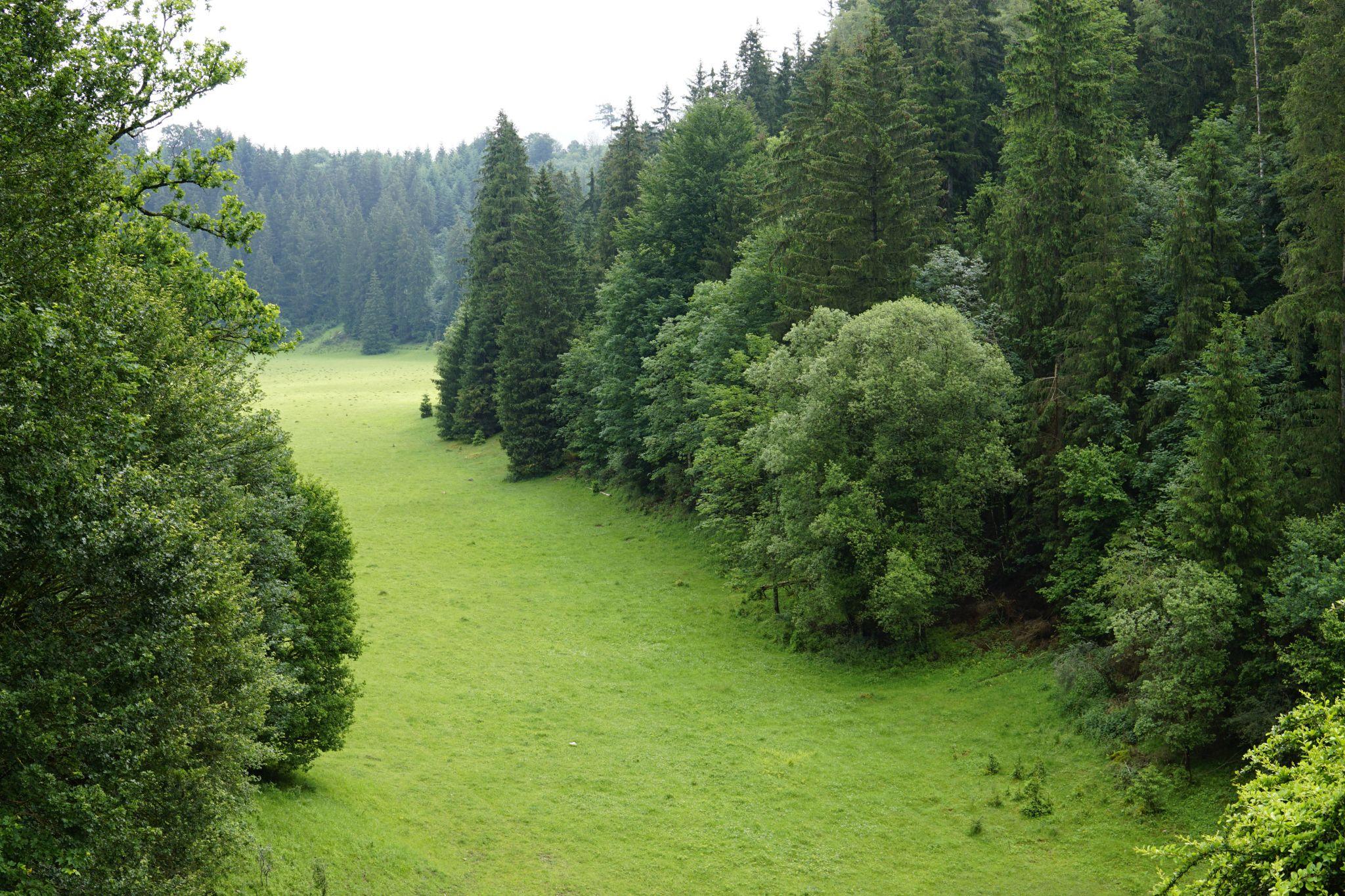Wasserrückhaltebecken Wental, Germany