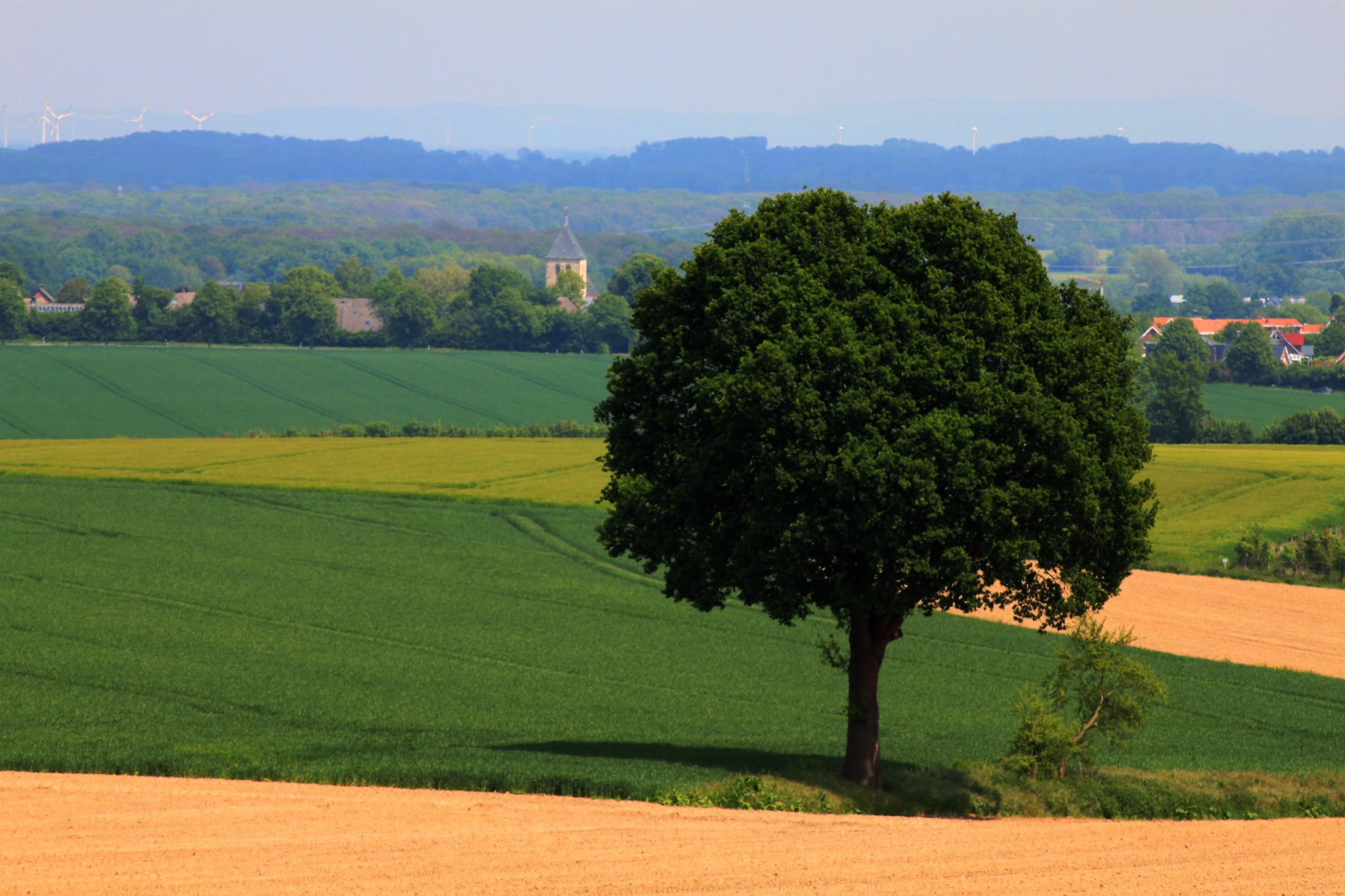 Blick von den Baumbergen auf Havixbeck, Germany