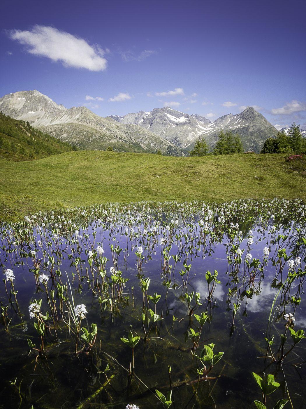 Hirschbichl, Austria