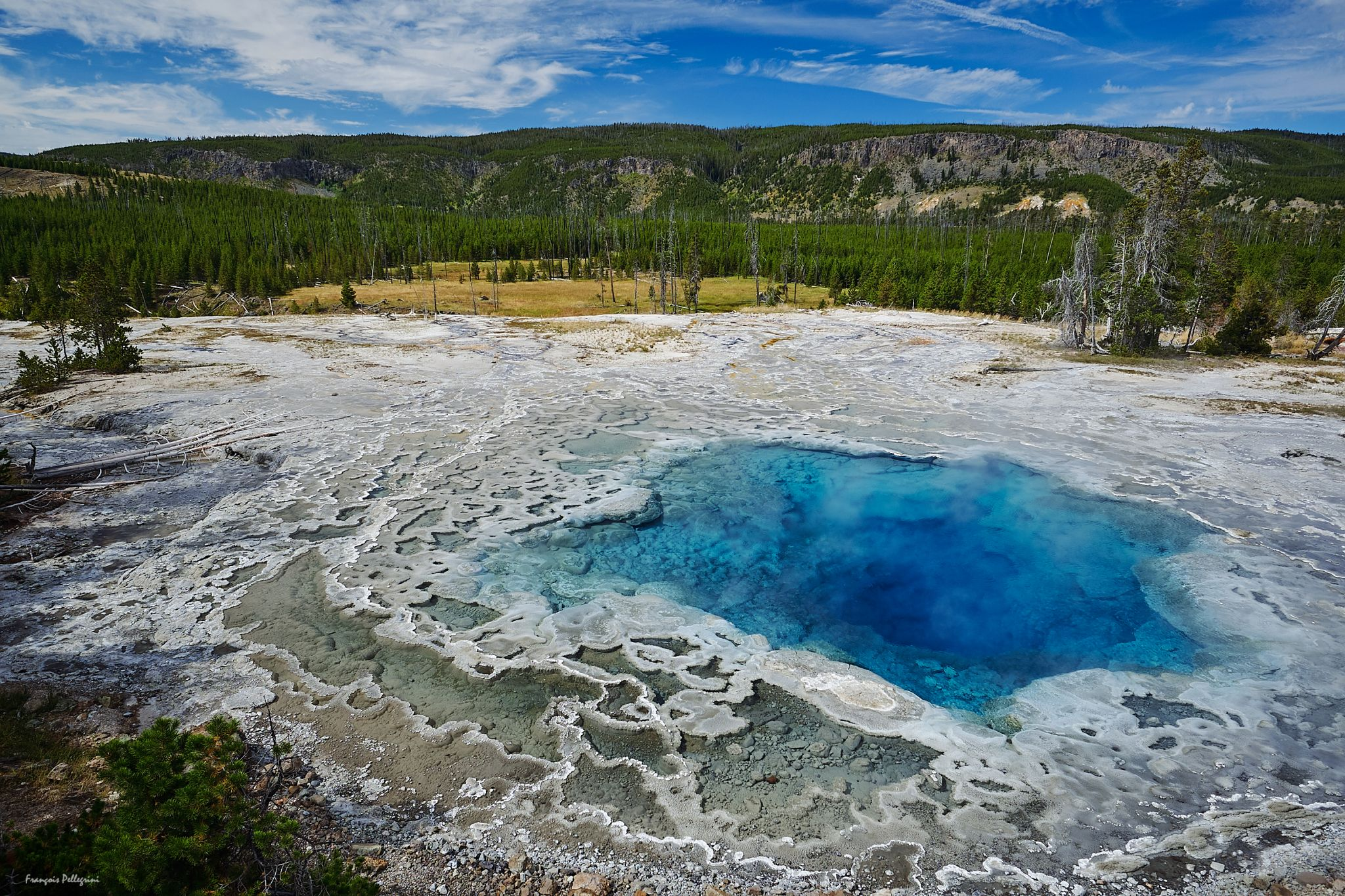 Artemisia Geyser, Yellowstone, USA