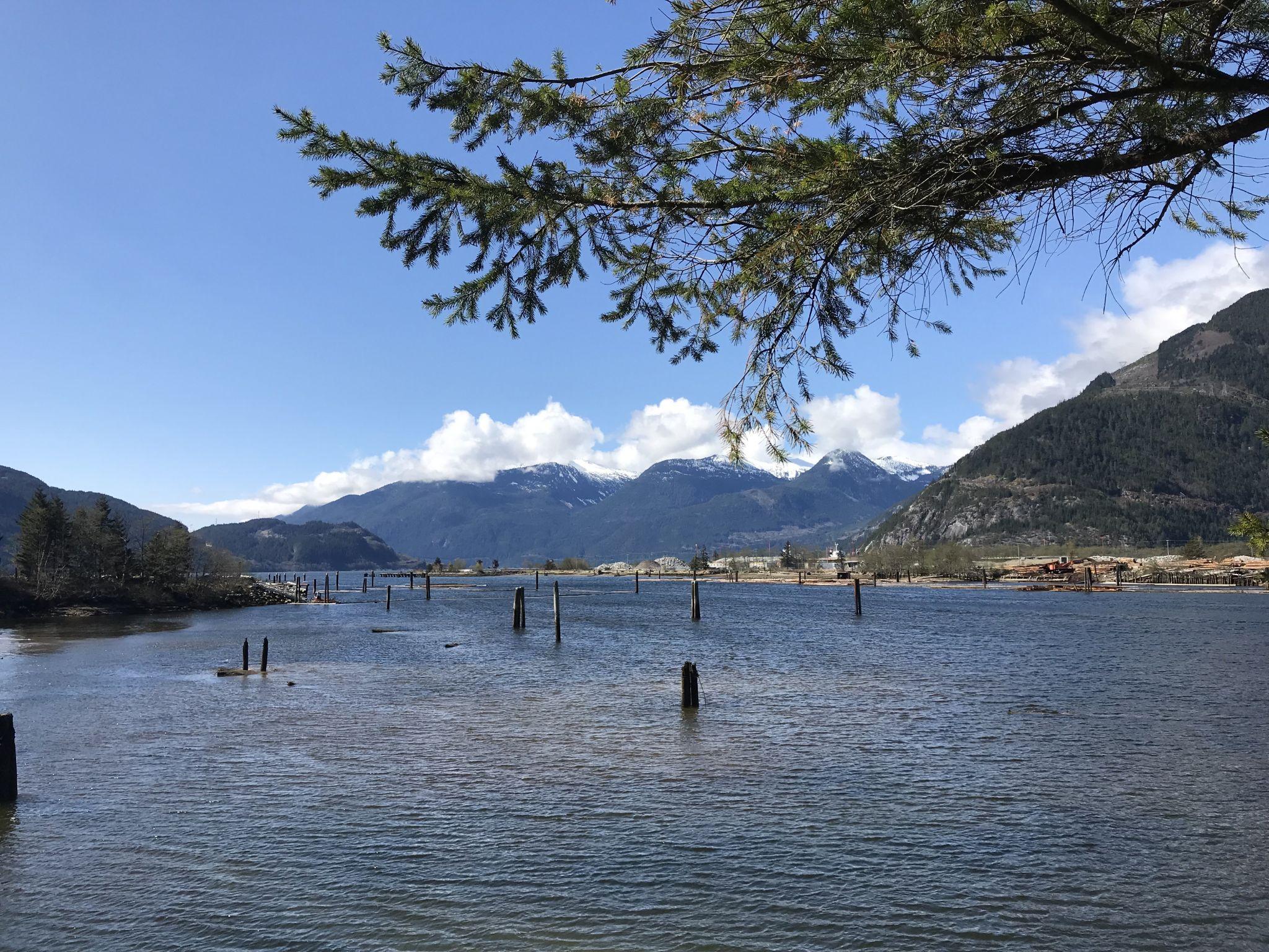 Squamish logging port, Canada