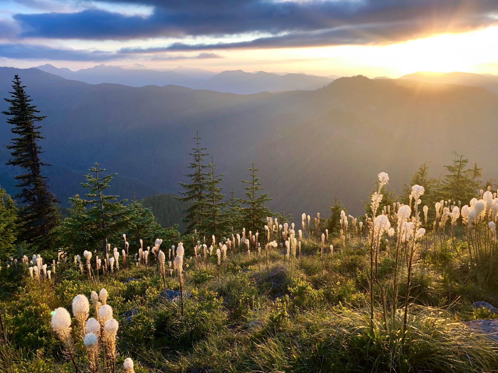 Sun Top Lookout, USA