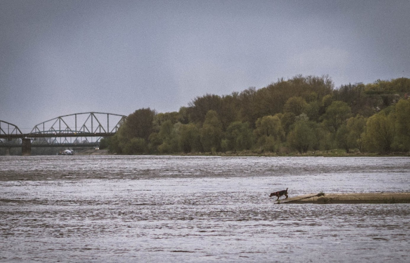 Torun, Vistula river, Poland