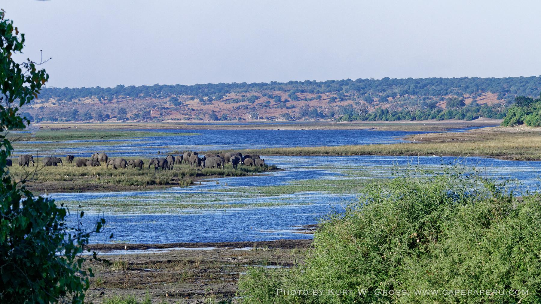 Chobe Nationalpark, Sambesi river, Botswana, Botswana