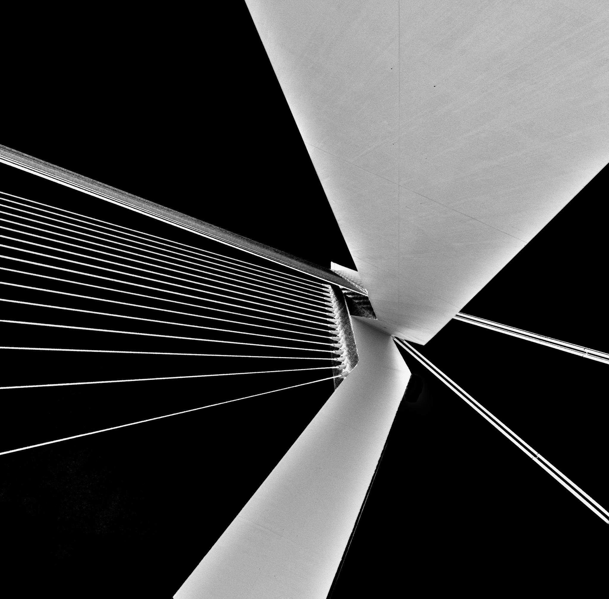 Erasmus Bridge / Erasmusbrug, Netherlands