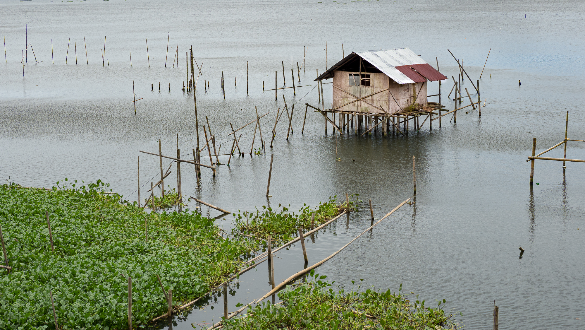 Floating houses in Poso lake, Indonesia