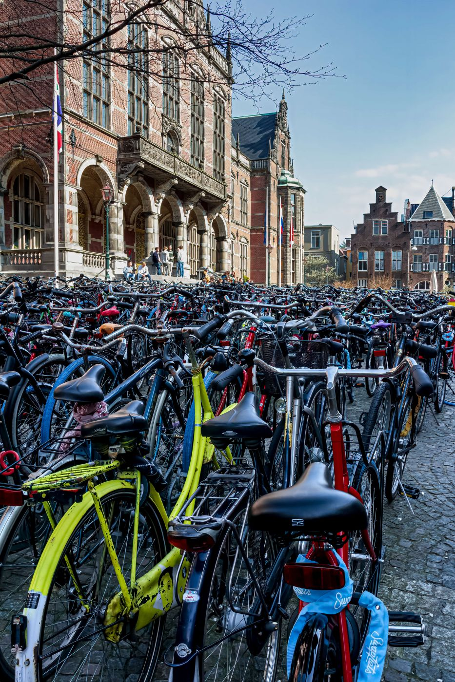 Groningen Bicycles, Netherlands