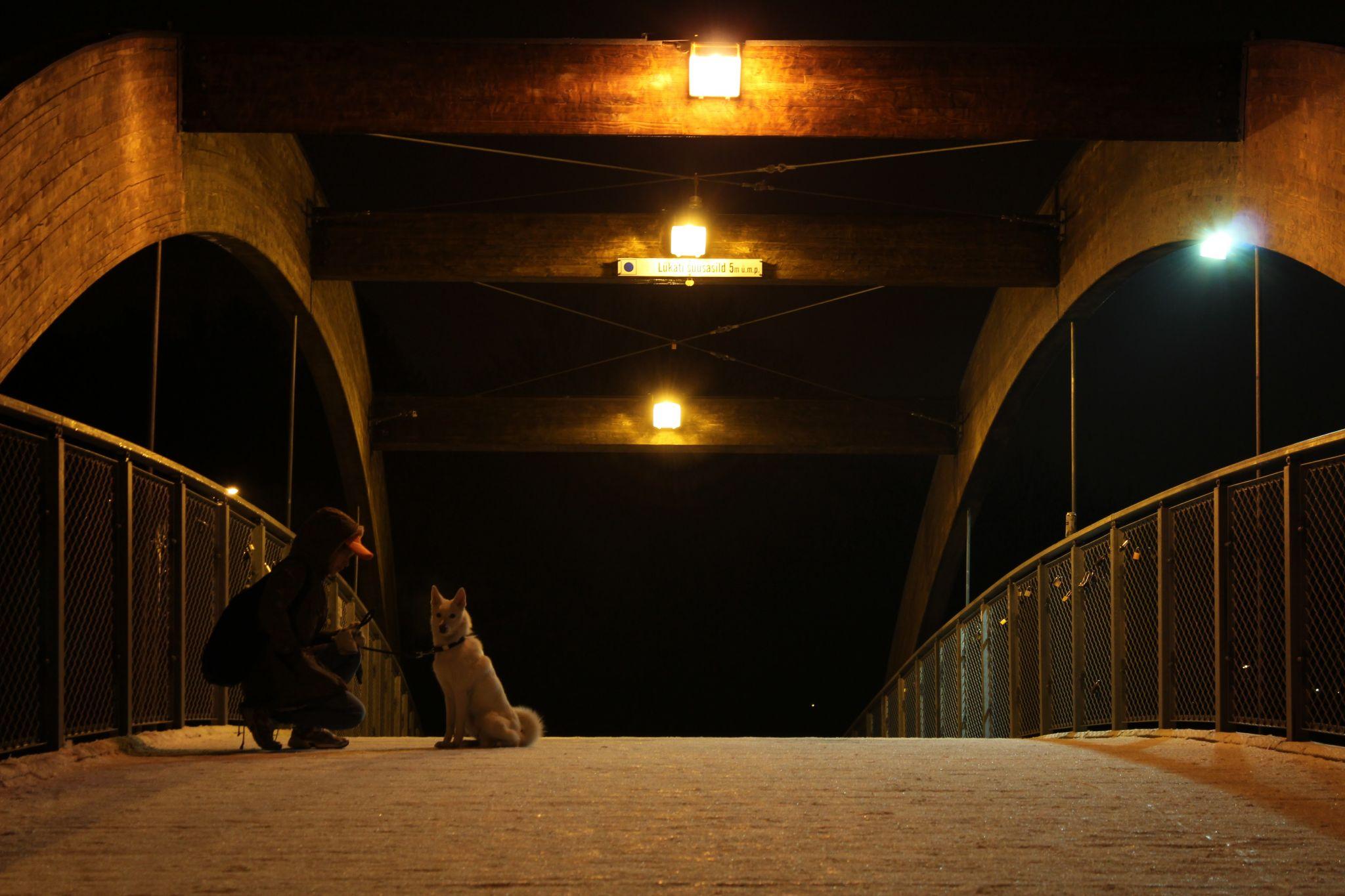 Pirita Tervise Rada Bridge, Estonia