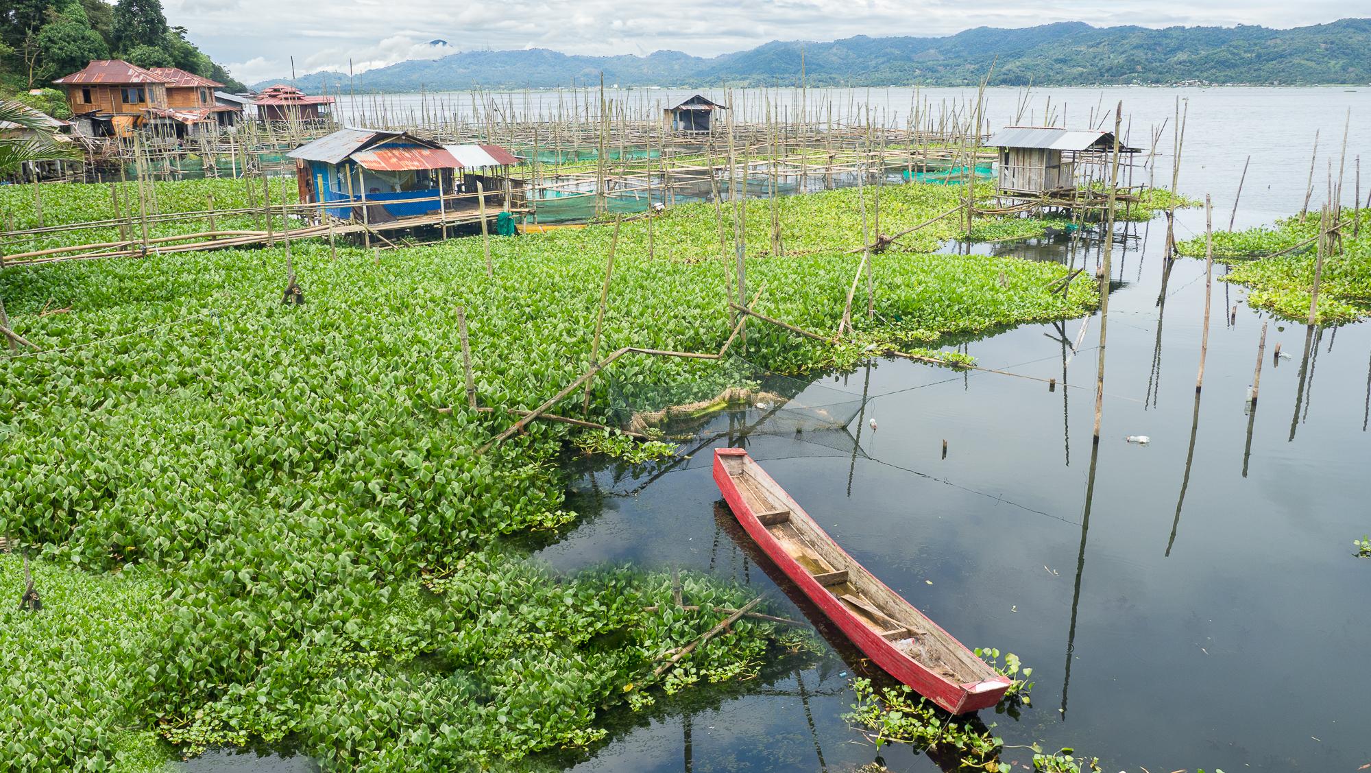 Poso lake, Indonesia