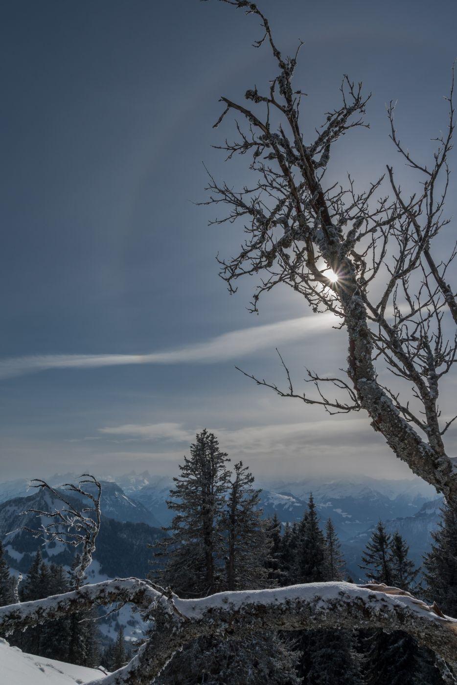 Rigi Scheidegg, Switzerland