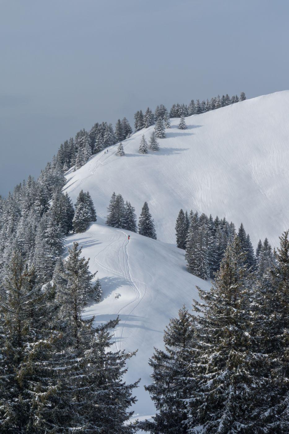 Snow shoe hikers, Rigi, Switzerland