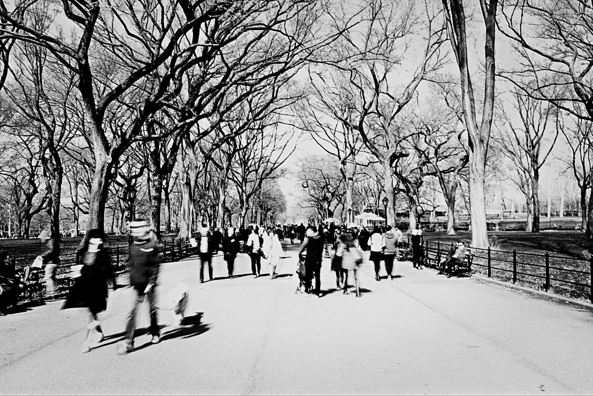The Mall at Central Park, USA