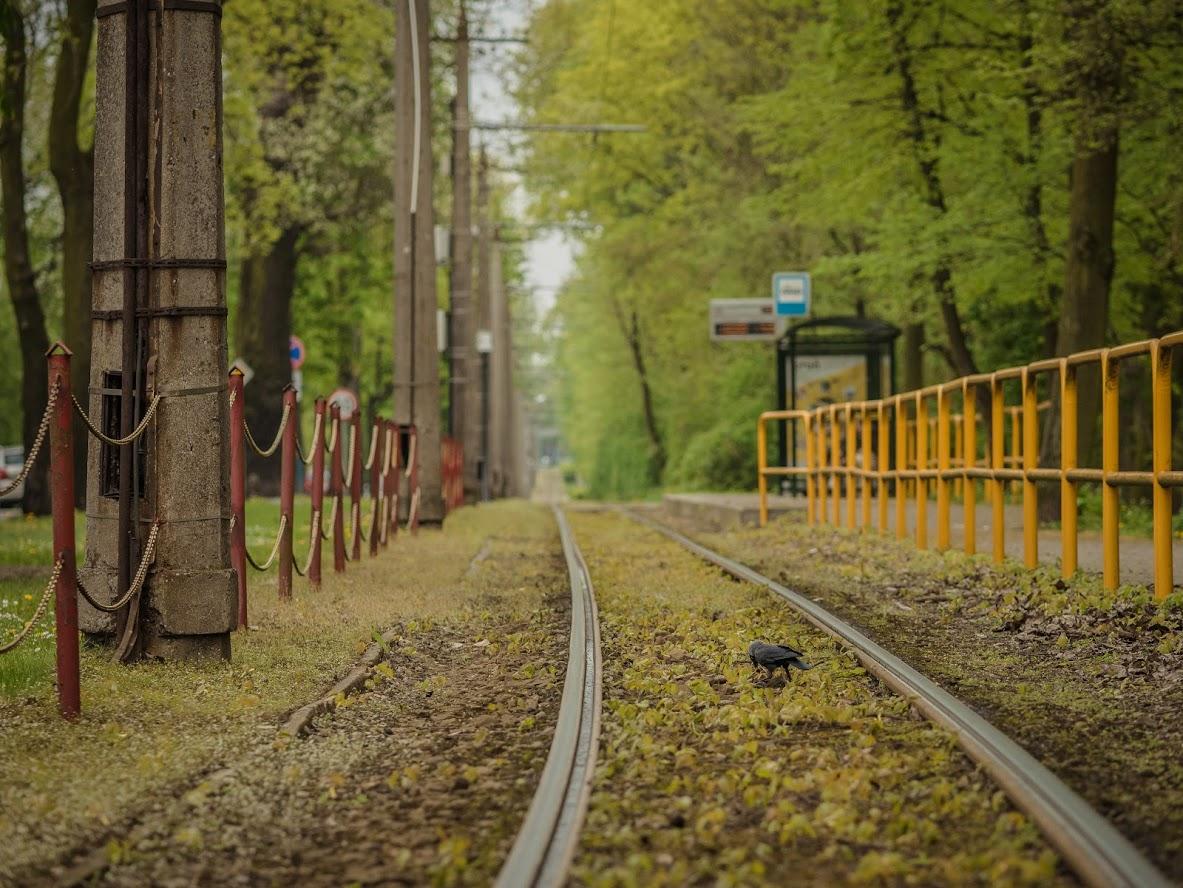Torun, Bydgoska street, Poland