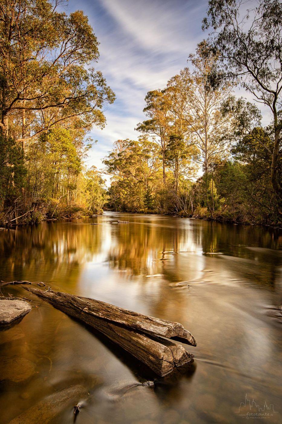 Tyenna River, Mt Field NP, Tasmania, Australia