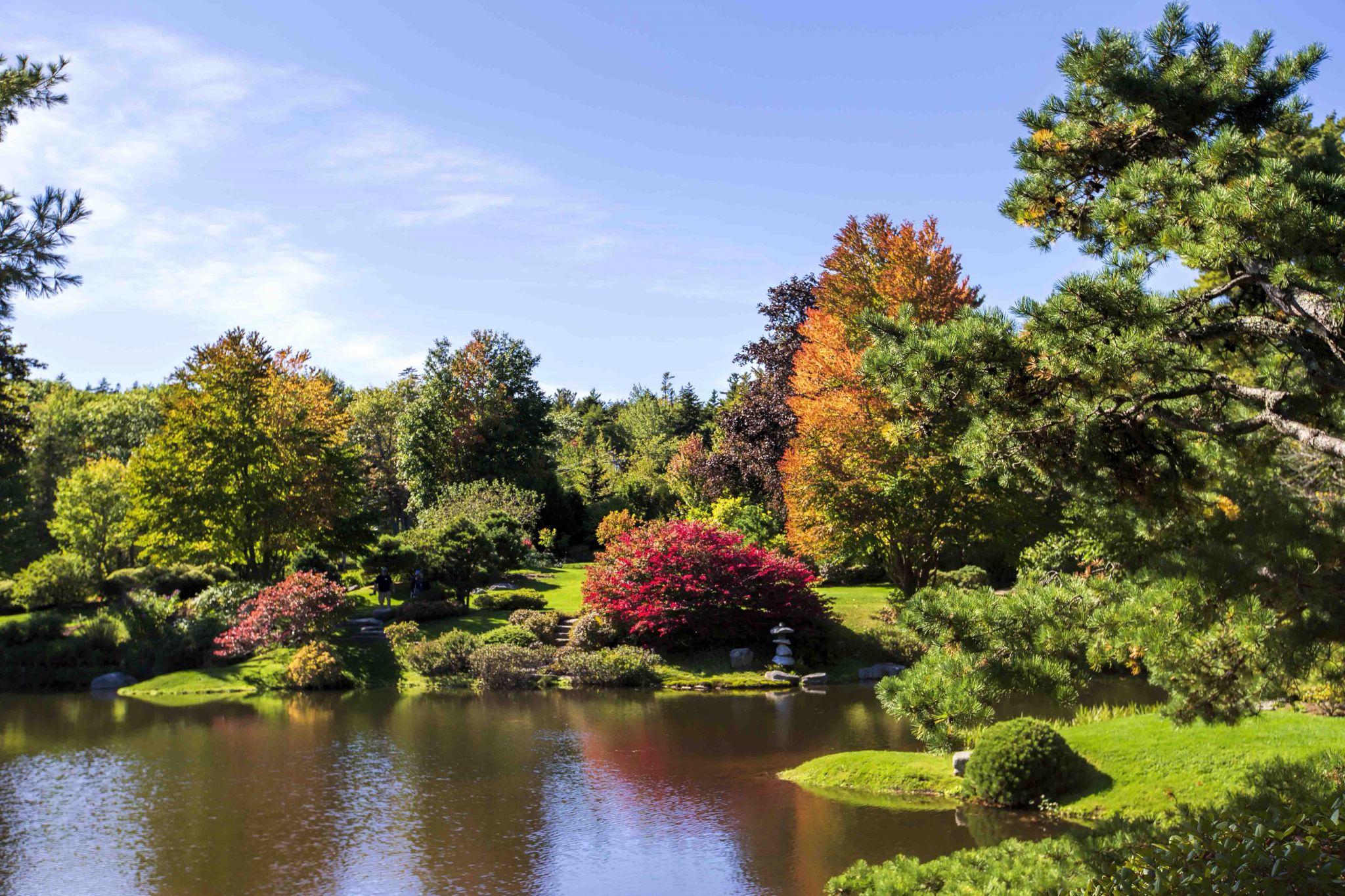 Asticou Azalea Gardens, USA
