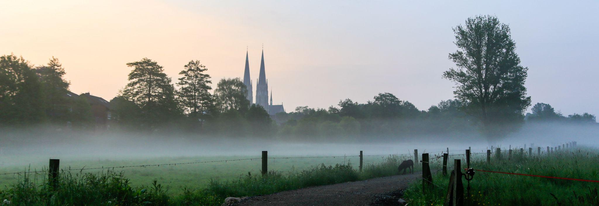 Billerbeck am Morgen, Germany