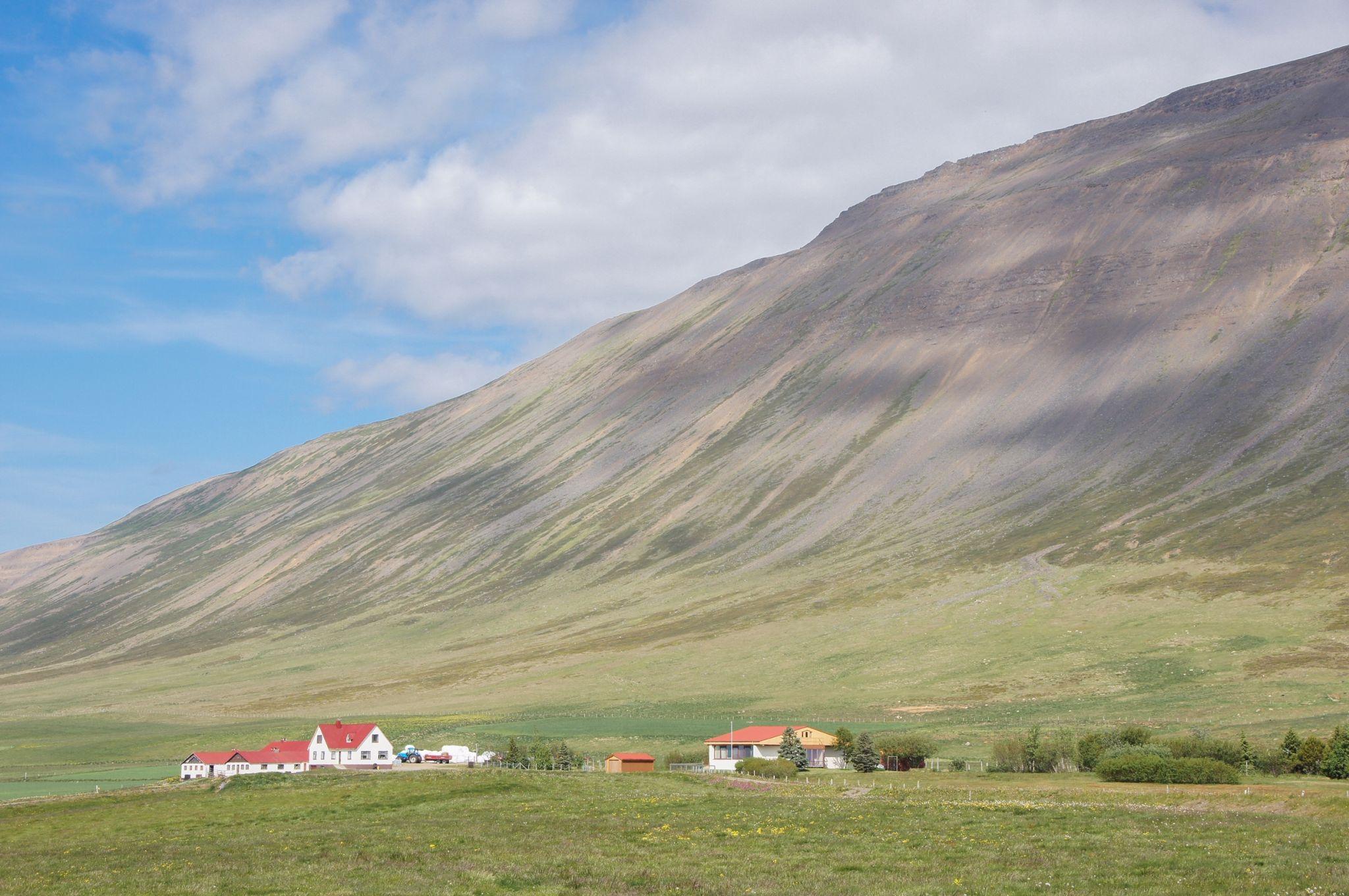 houses near Hofsós, Iceland