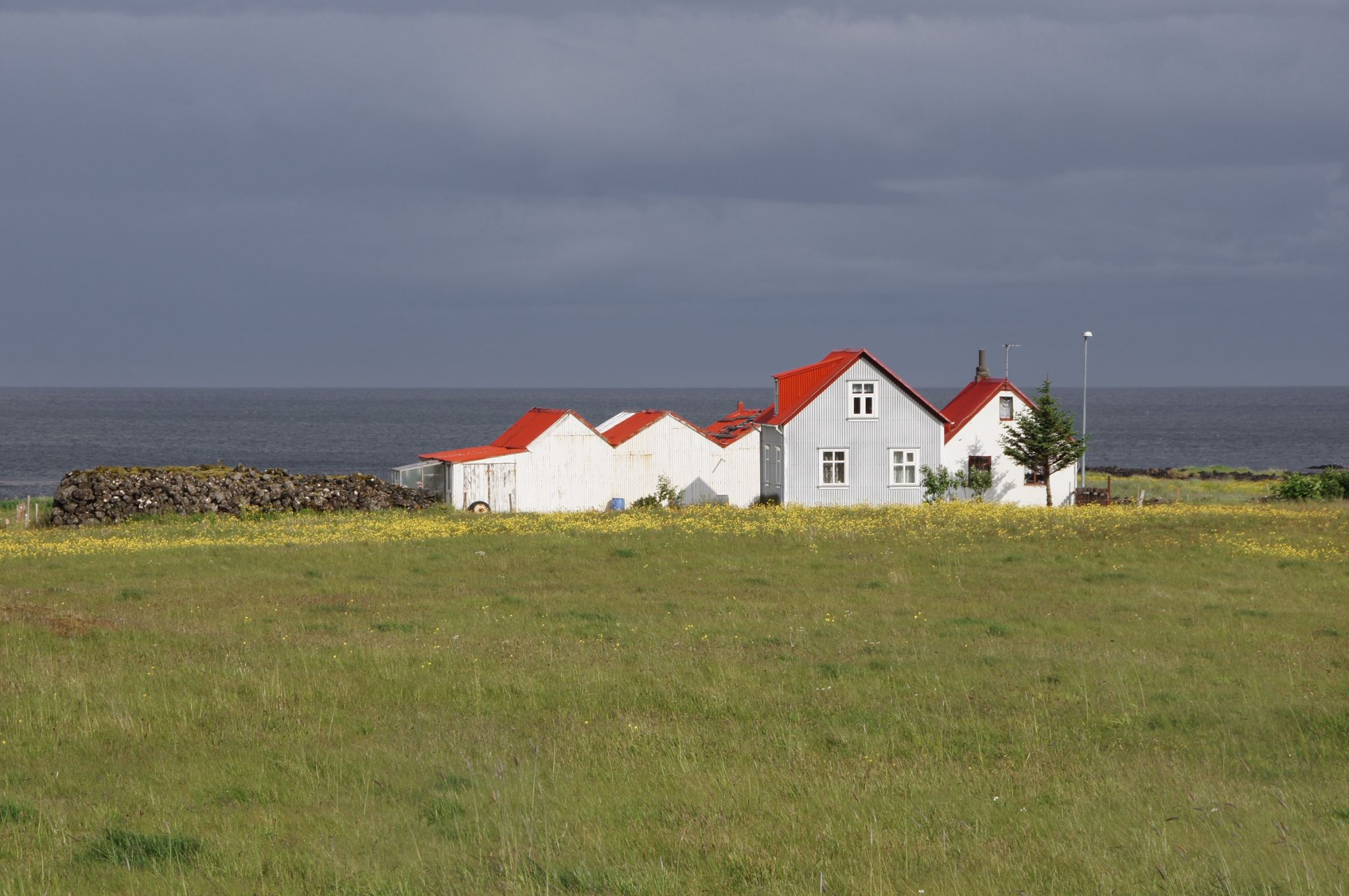 Red roof farm, Iceland