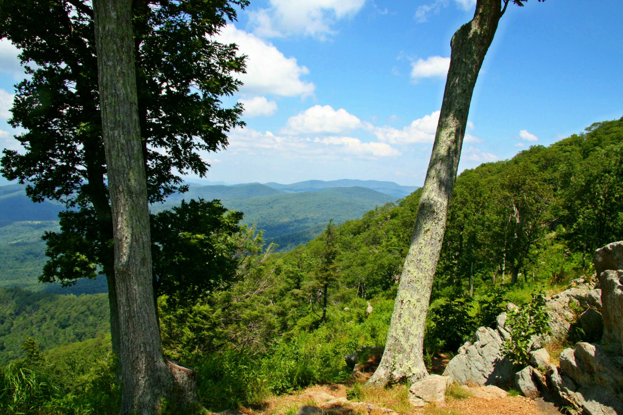 Shenandoah Nationalpark, USA