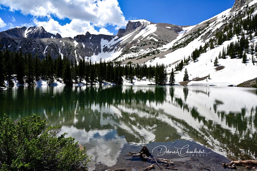 Stella Lake Great Basin National Park Nevada Usa