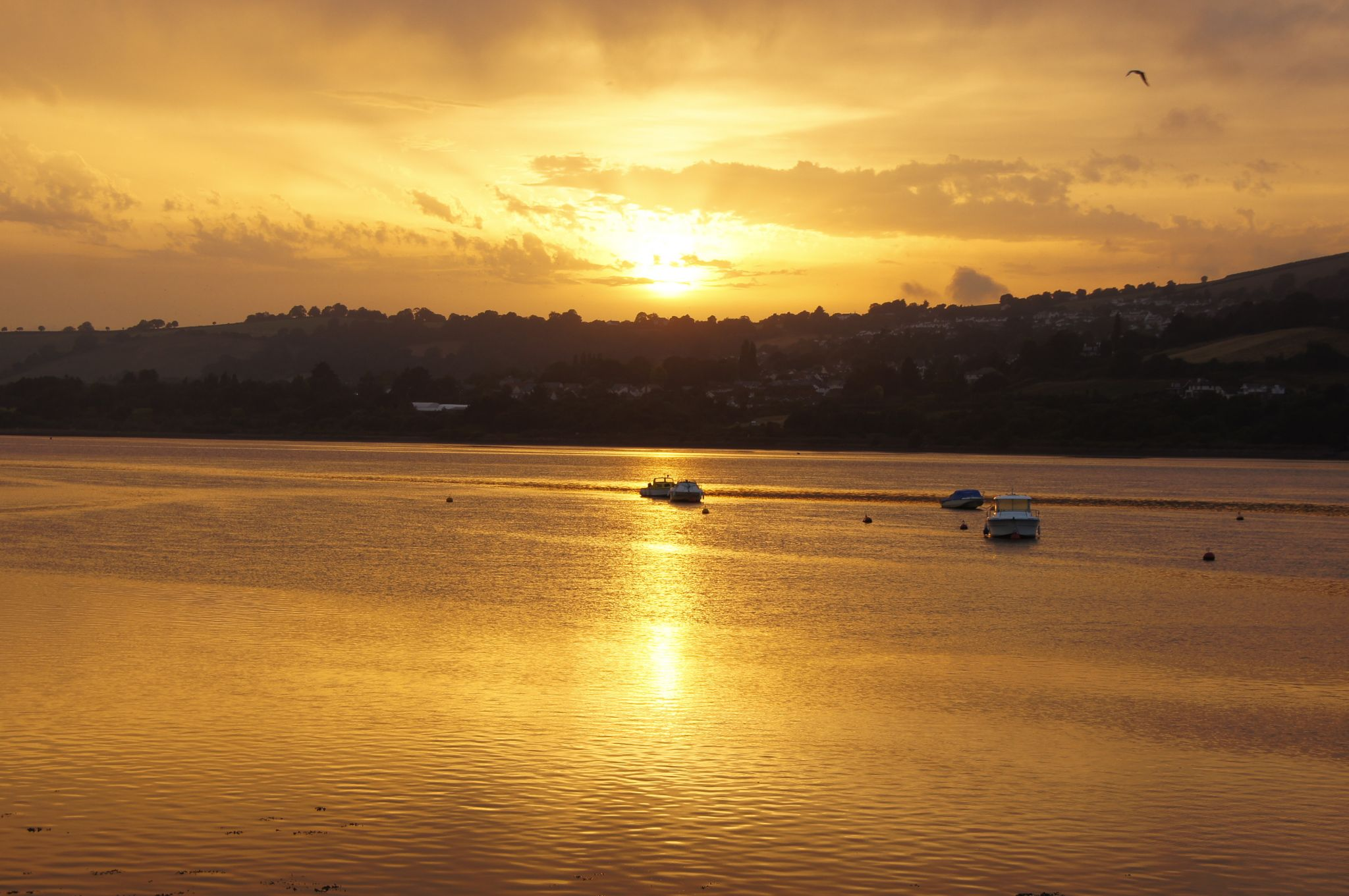 Sunset over river Teign, United Kingdom