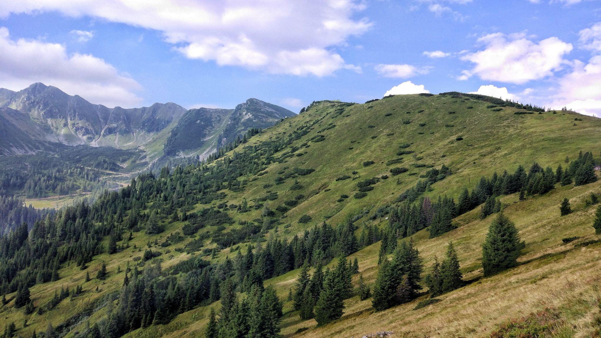 Bärensulsattel, Austria