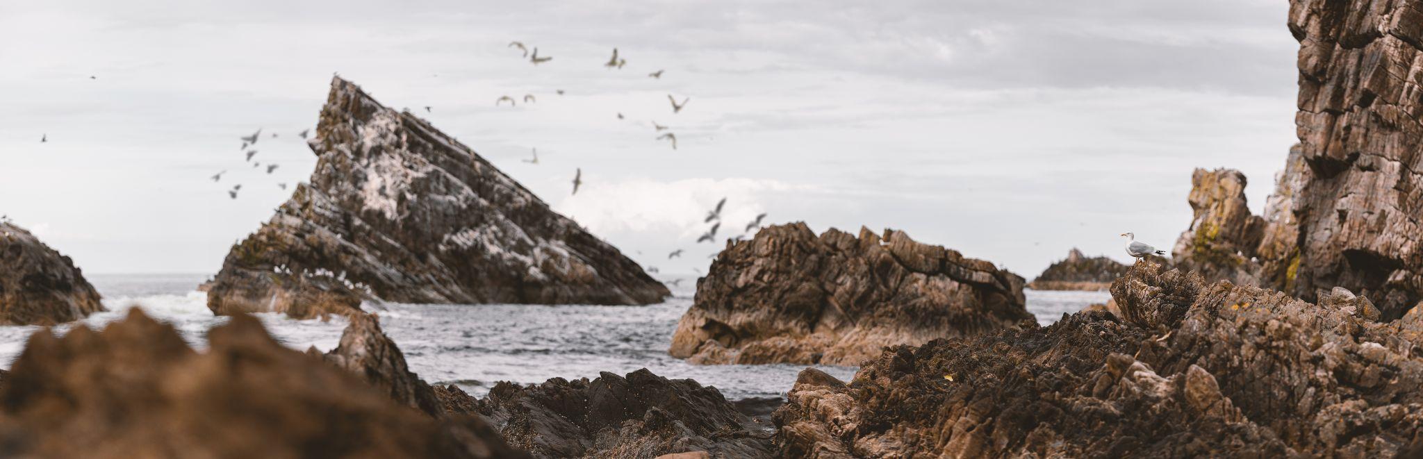 Bow Fiddle Rock Beach, United Kingdom
