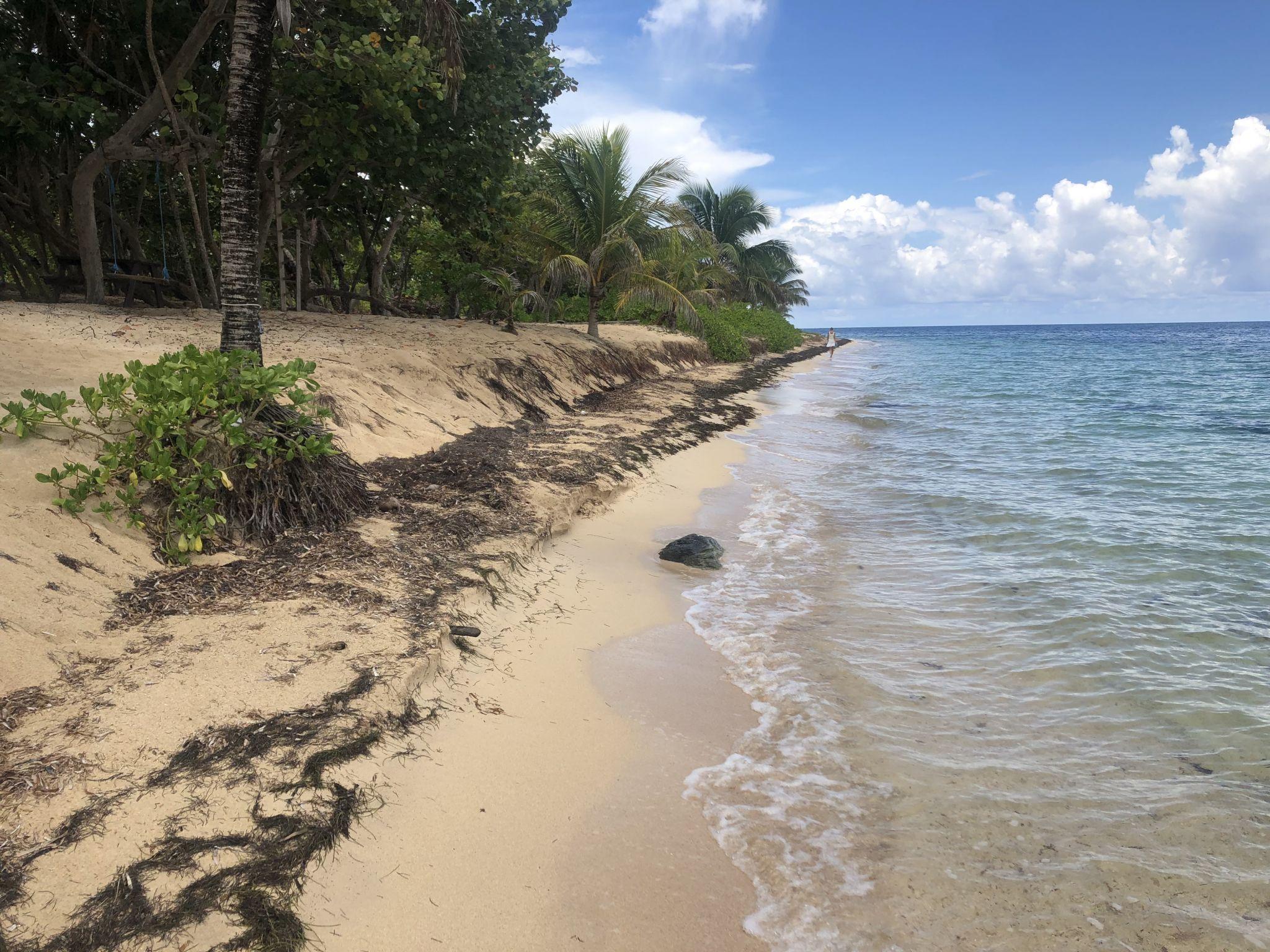 Camp Bay Beach, Roatan, Honduras, Honduras