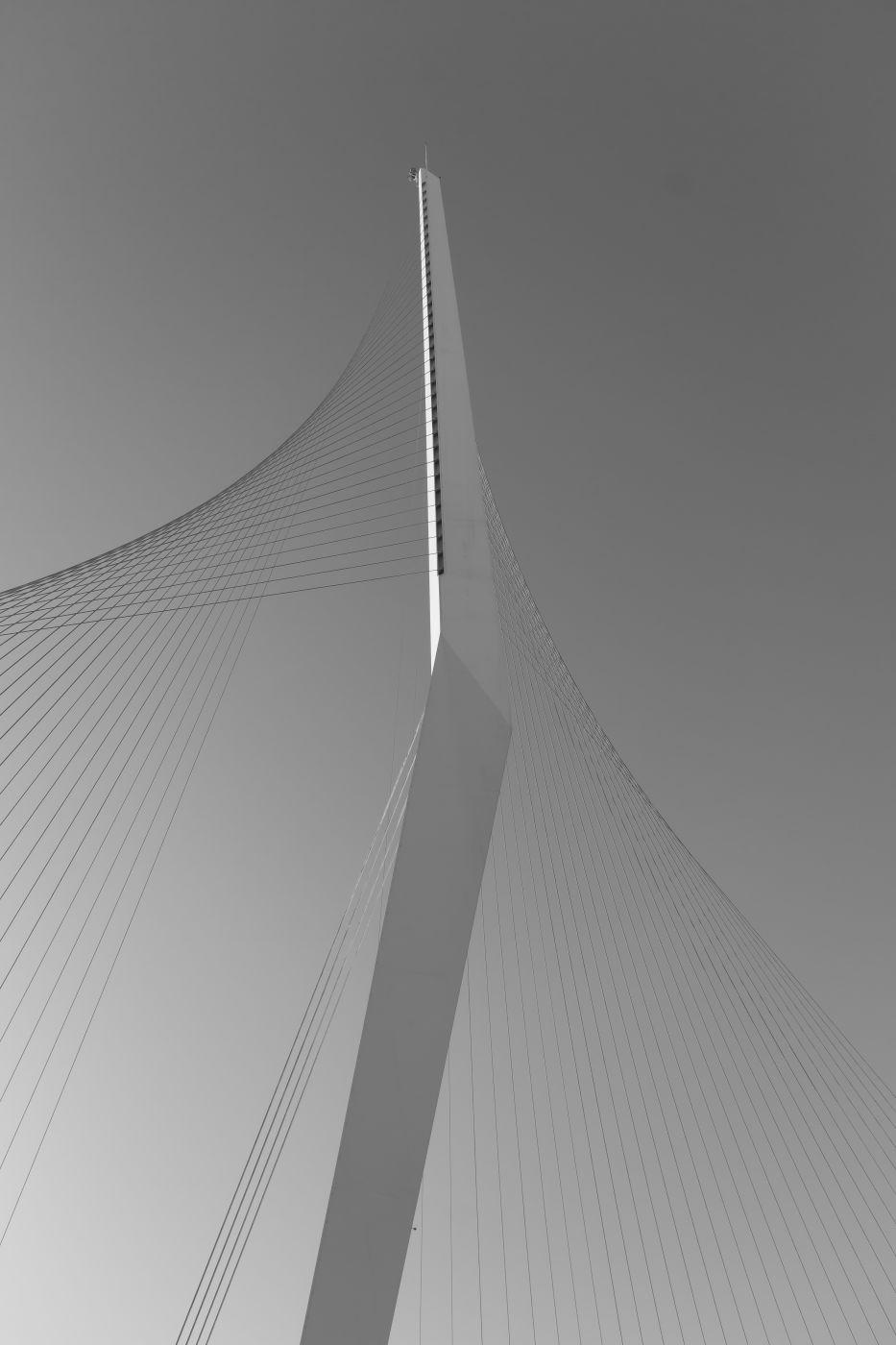 Chords Bridge, Israel