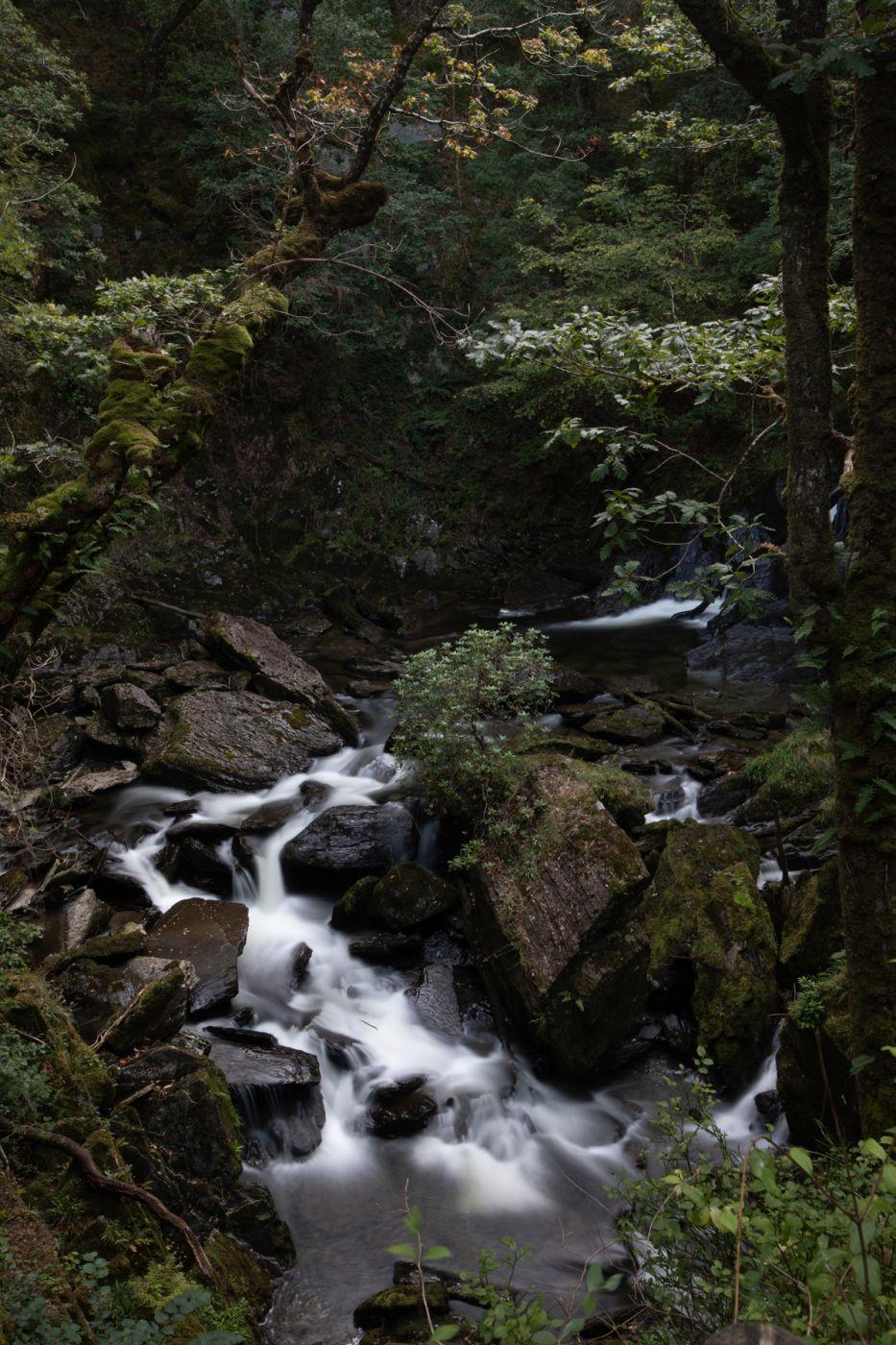Devil's Bridge Waterfalls Ceredigion, Wales, United Kingdom