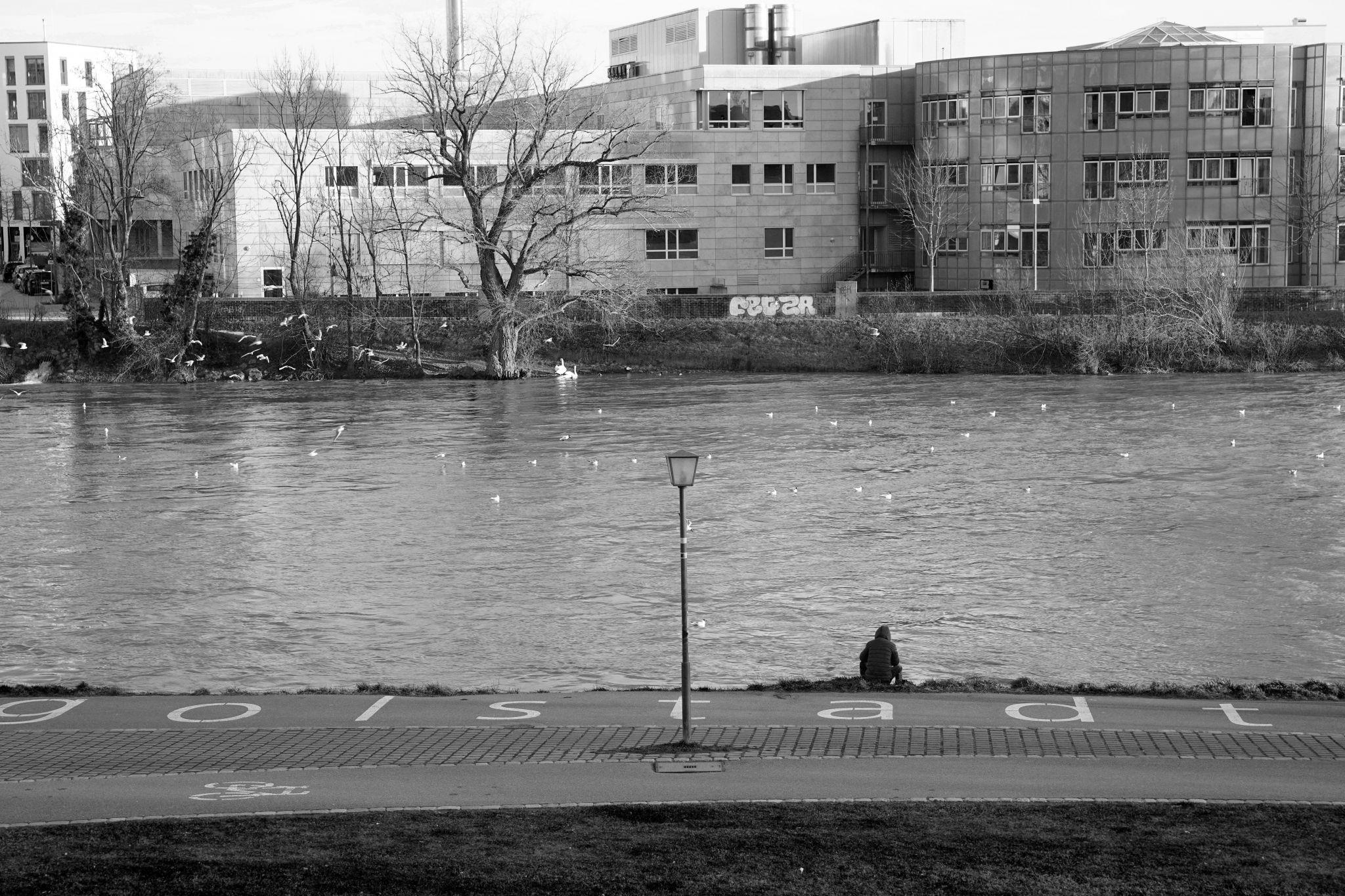 Donauufer, Germany