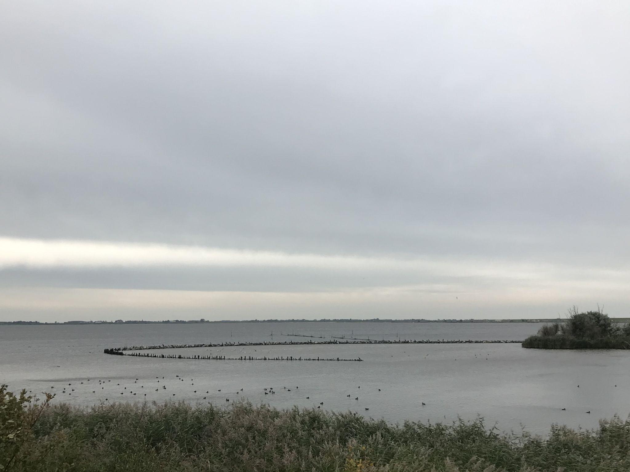 Gerbrandywei - Lauwersoog, Netherlands