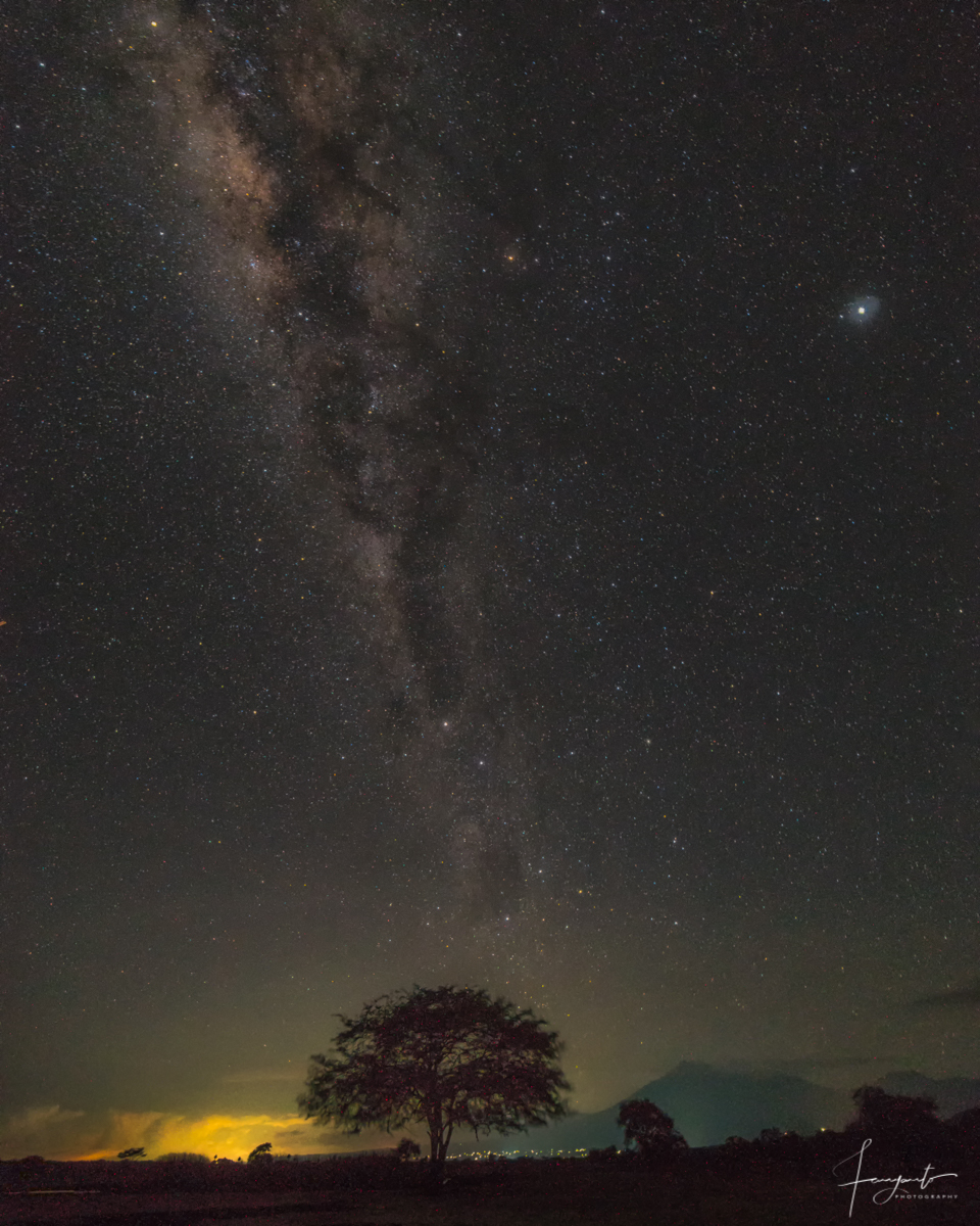 Stargazing at Baluran National Park, Indonesia