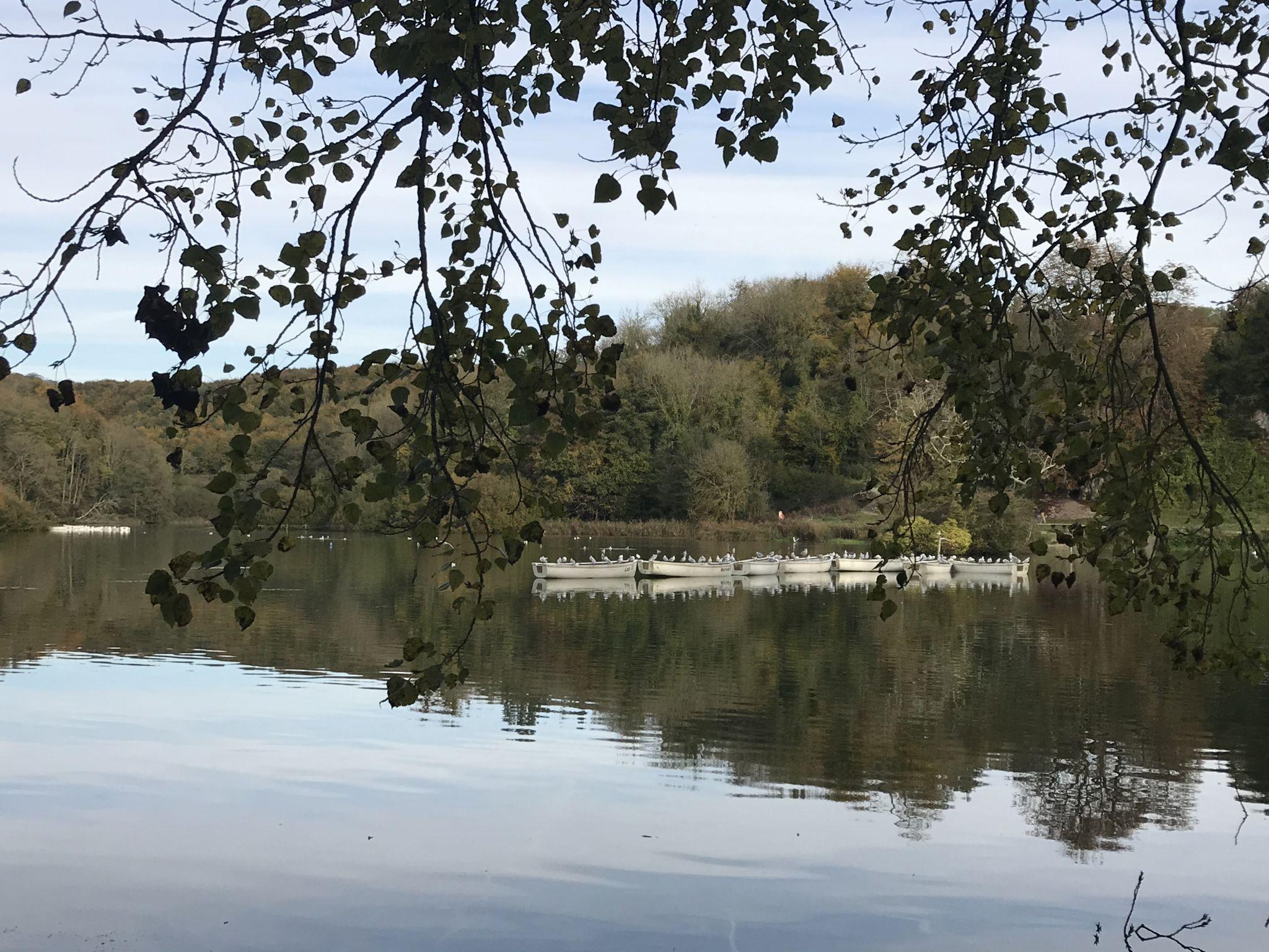 Swanbourne Lake Arundel, United Kingdom