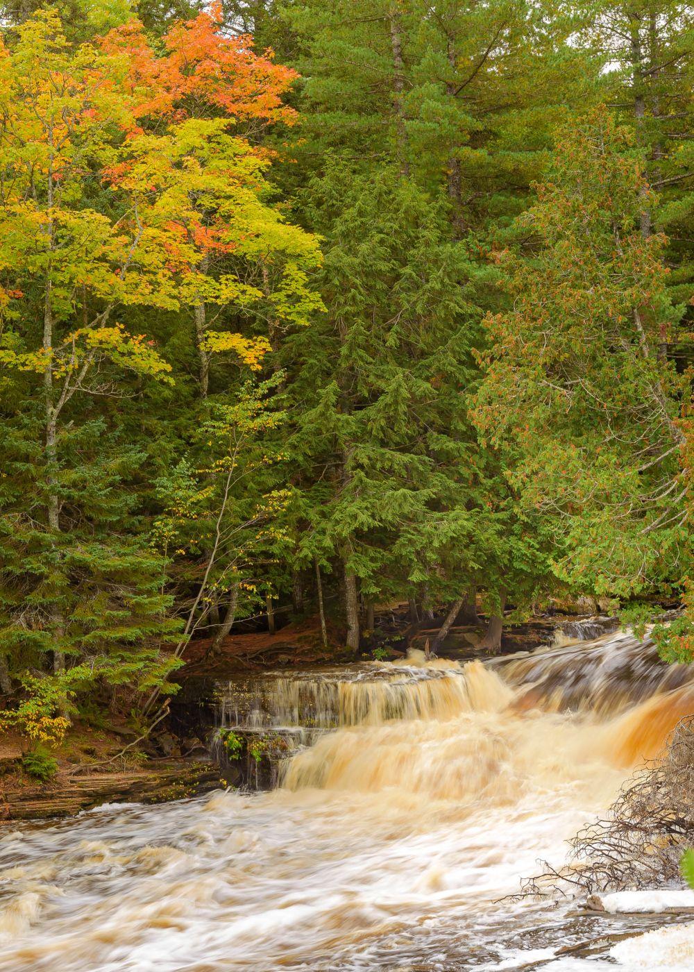 Tahquamenon Lower Falls, USA