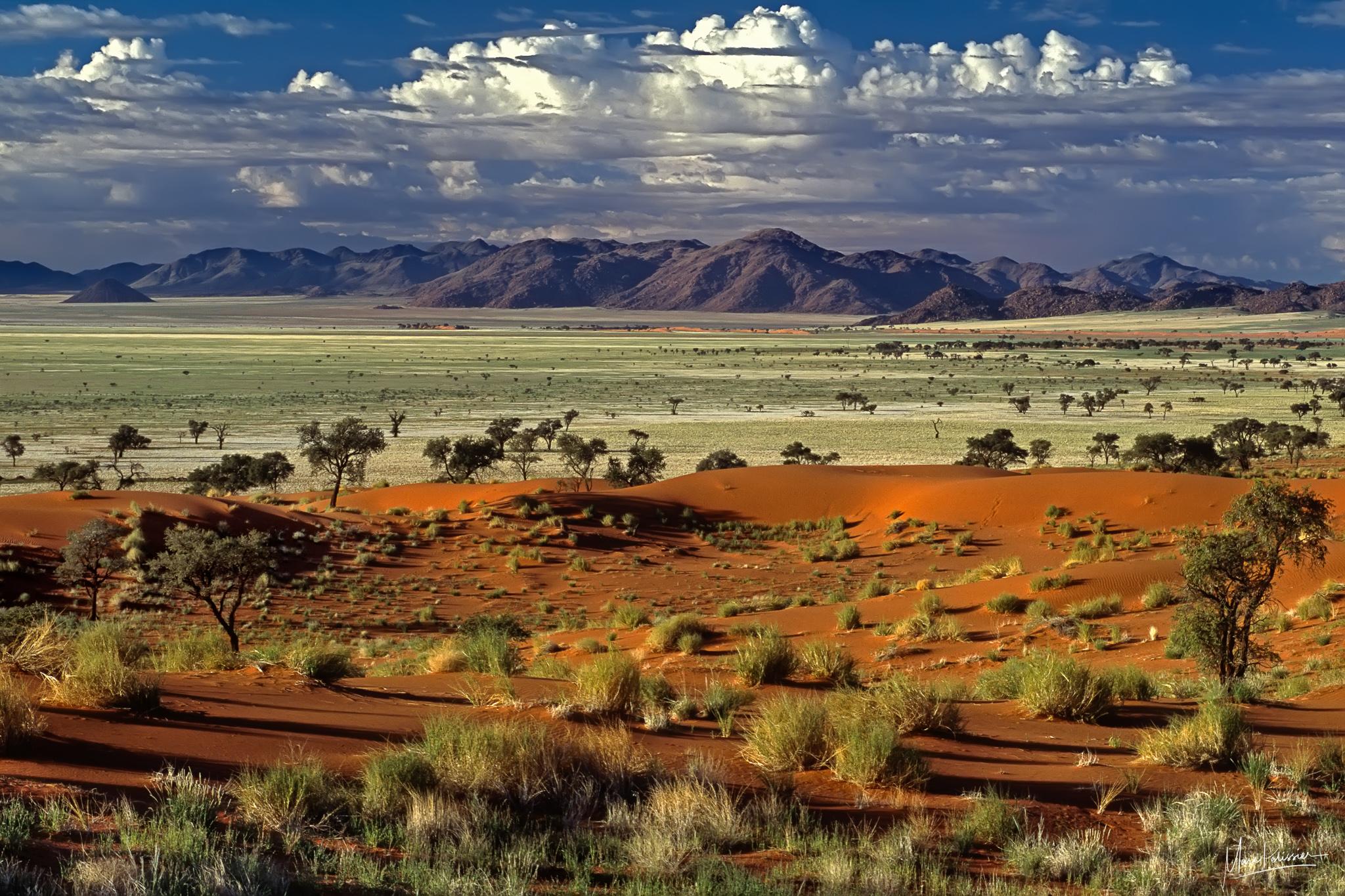 Tok tokkie panorama, Namibia