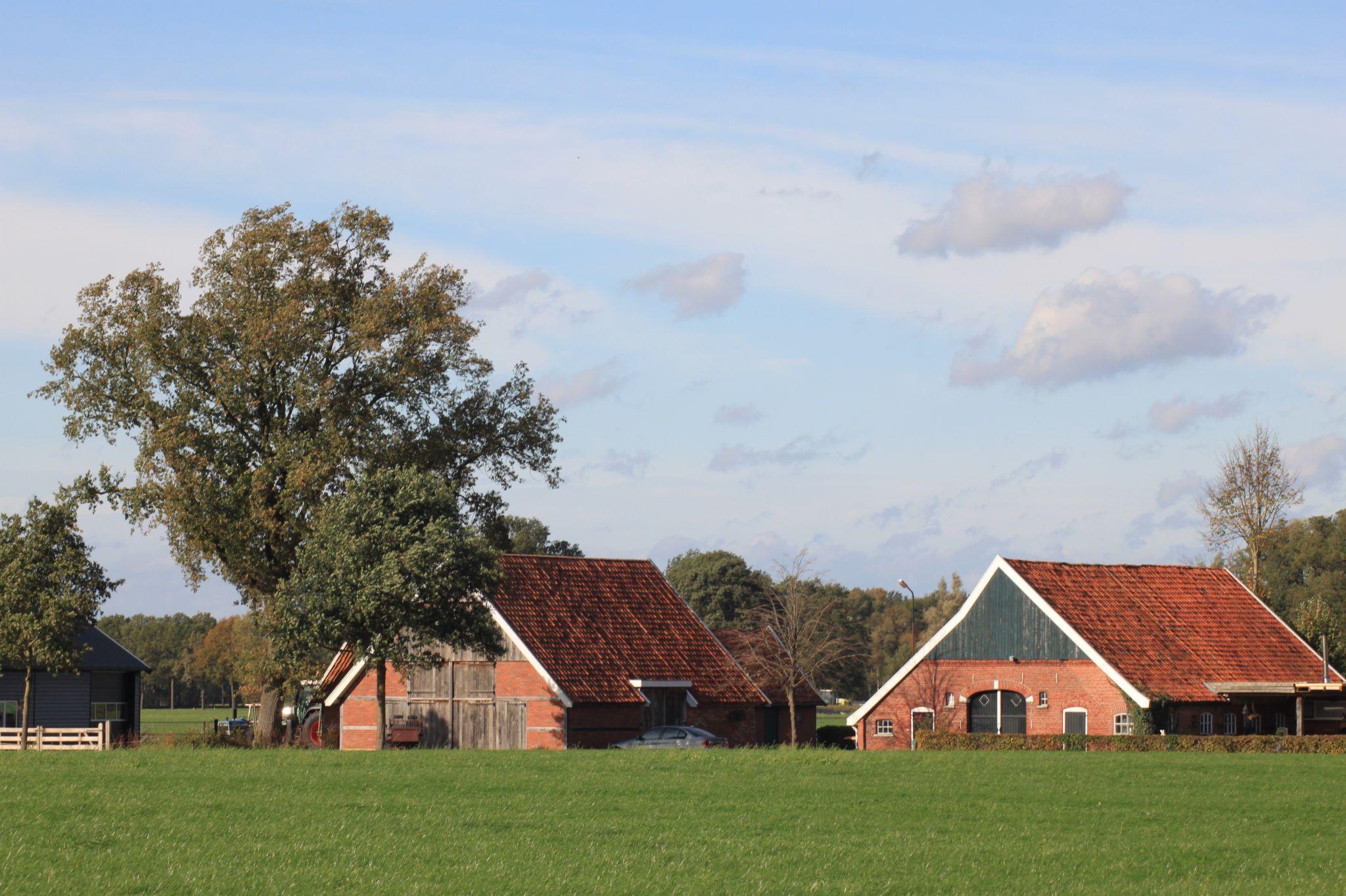 Bauernhof in den Niederlanden, Netherlands