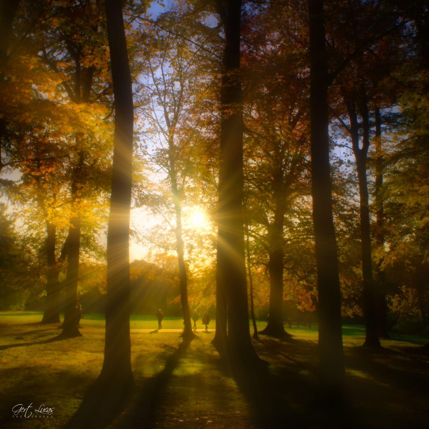 Bokrijk sunset, Belgium