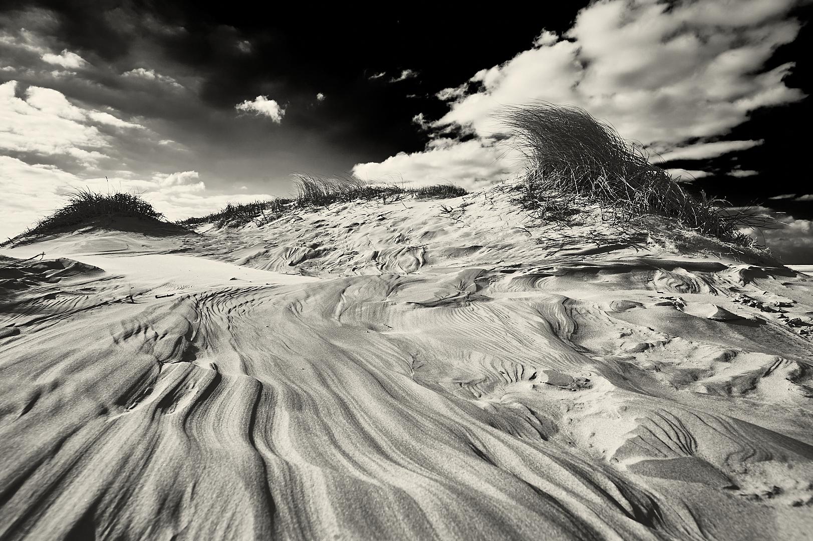 Borkum dunes, Germany