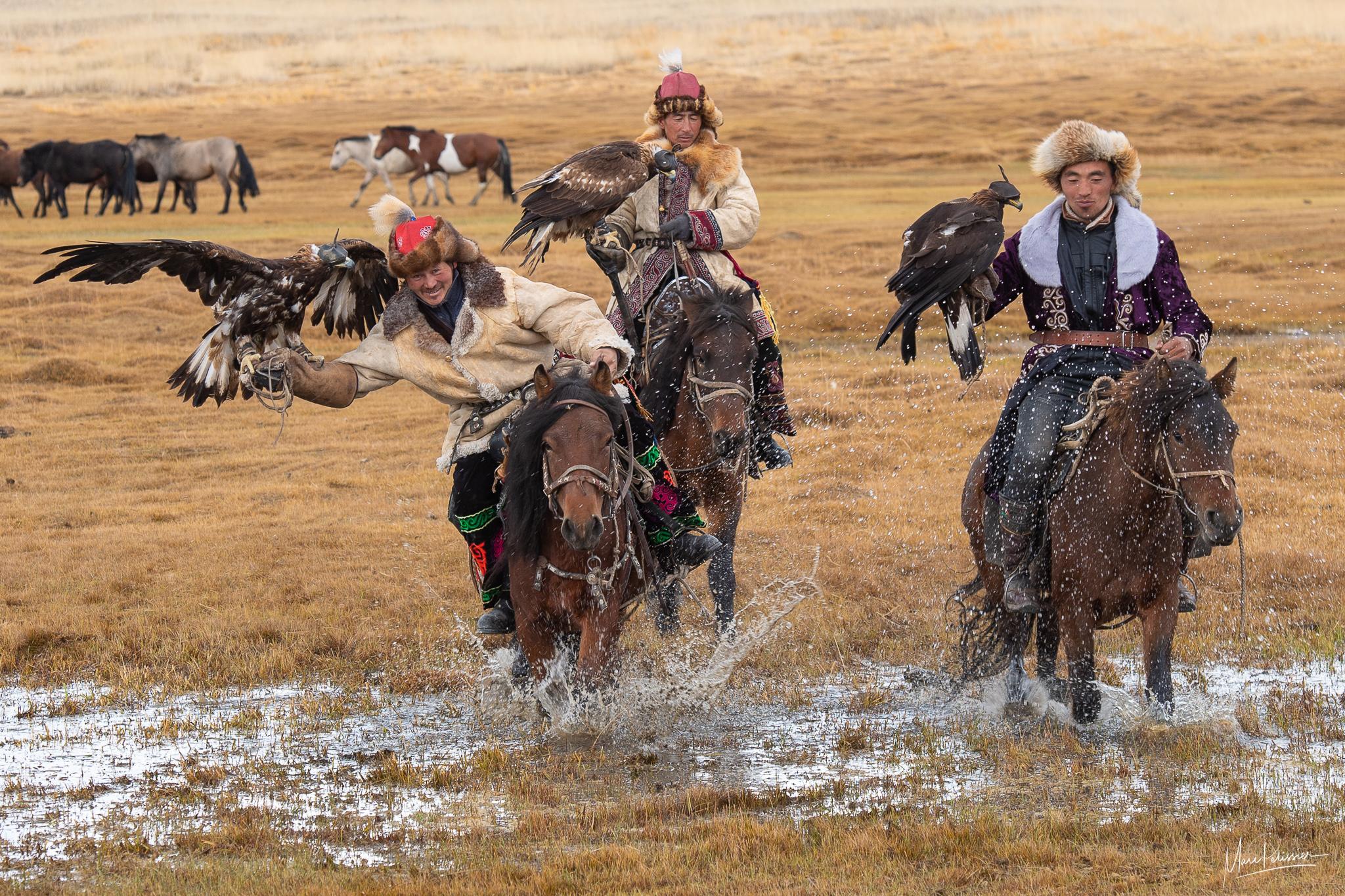 Mongolia eagle hunters, Mongolia