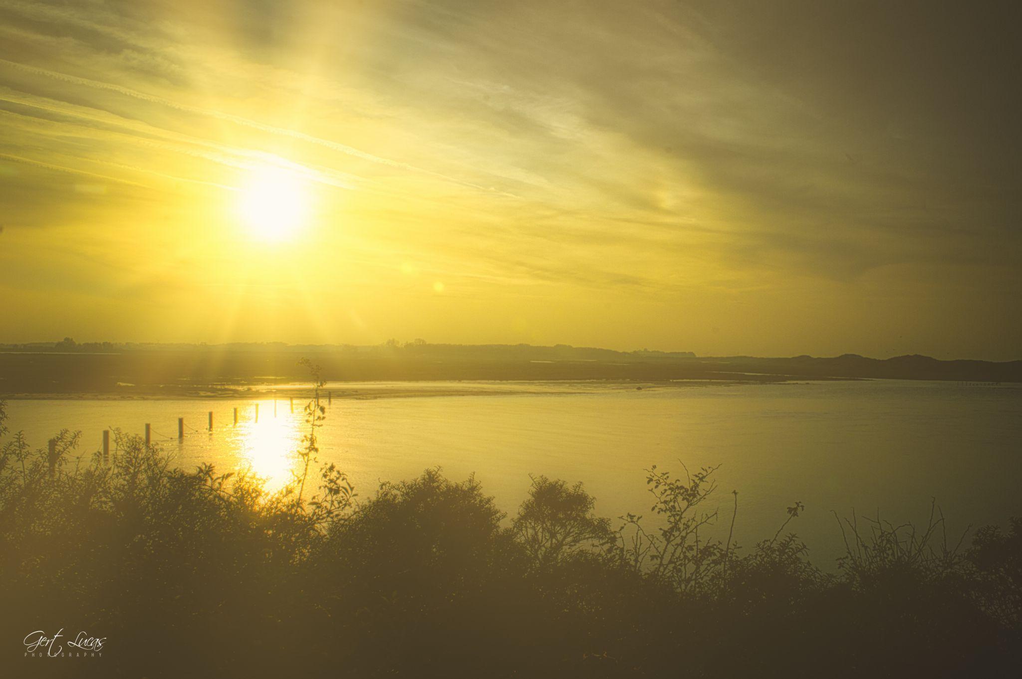 Zwin sunset, Netherlands