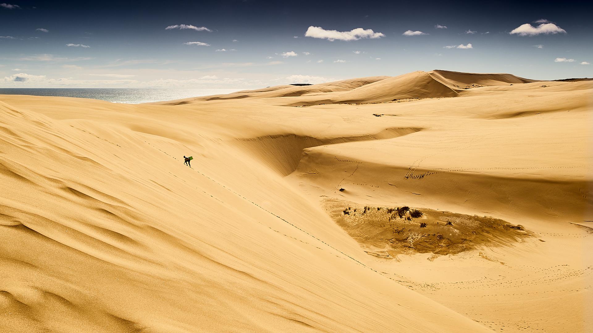 90 mile beach, Te Paki sand dunes, New Zealand